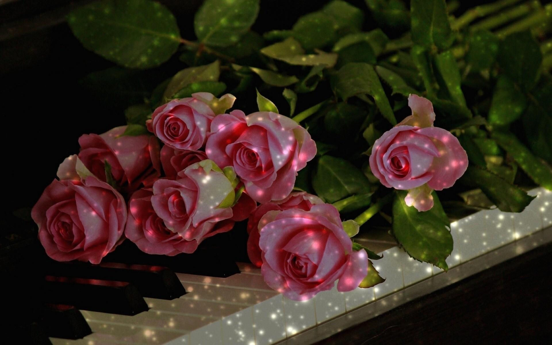Открытки с днем рождения музыкальные с розами