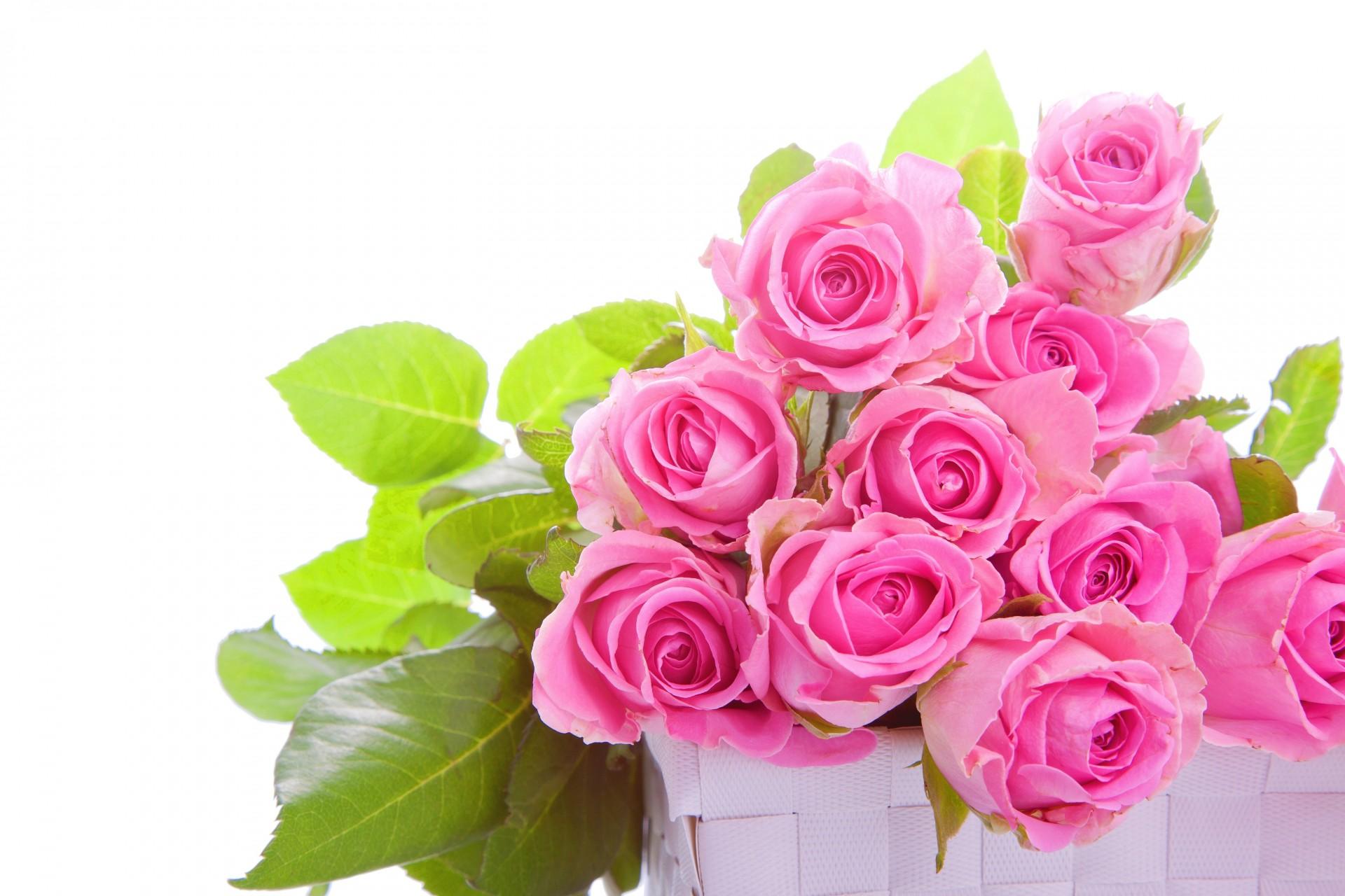 Днем дорожника, название открыток с цветами