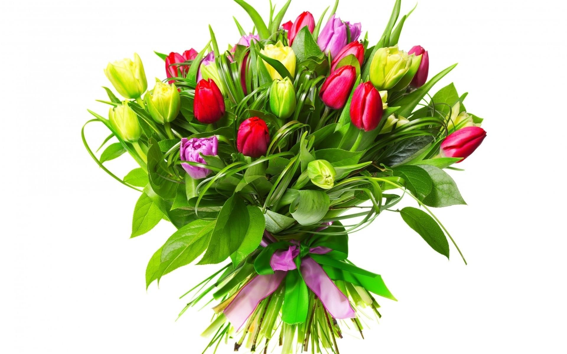 Авито цветы лилии