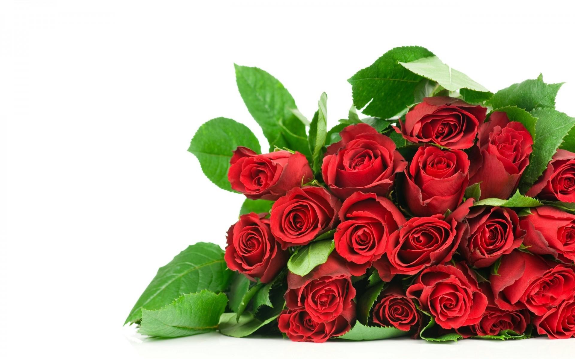 Открытку, цветы картинки к поздравлениями