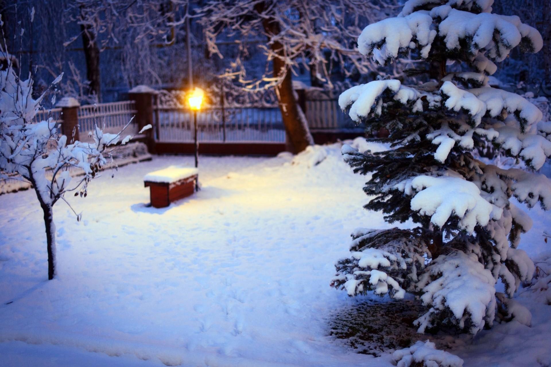 Фонтан Елка зима без смс