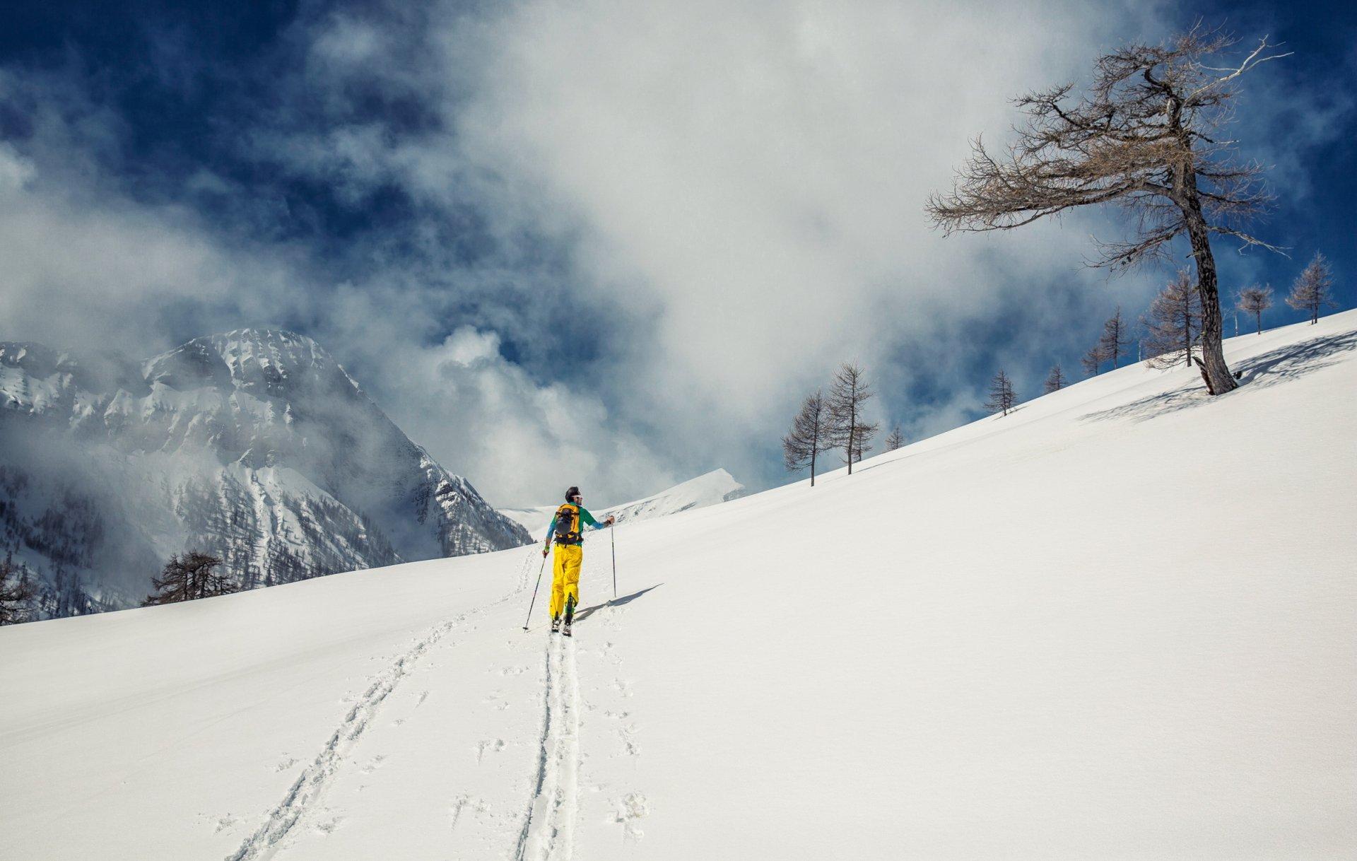 станет эта лыжник на горе фото рынке