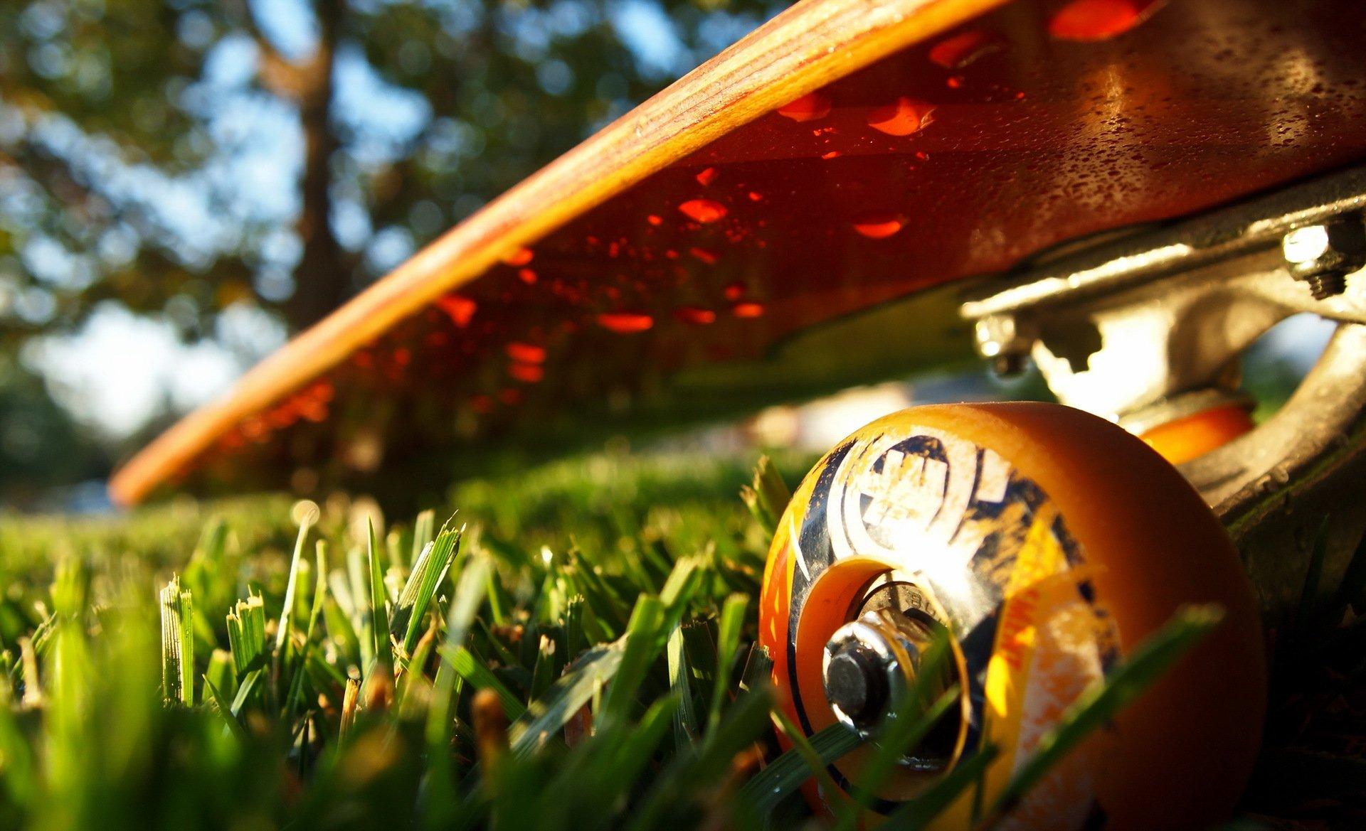 скейтборд на траве загрузить