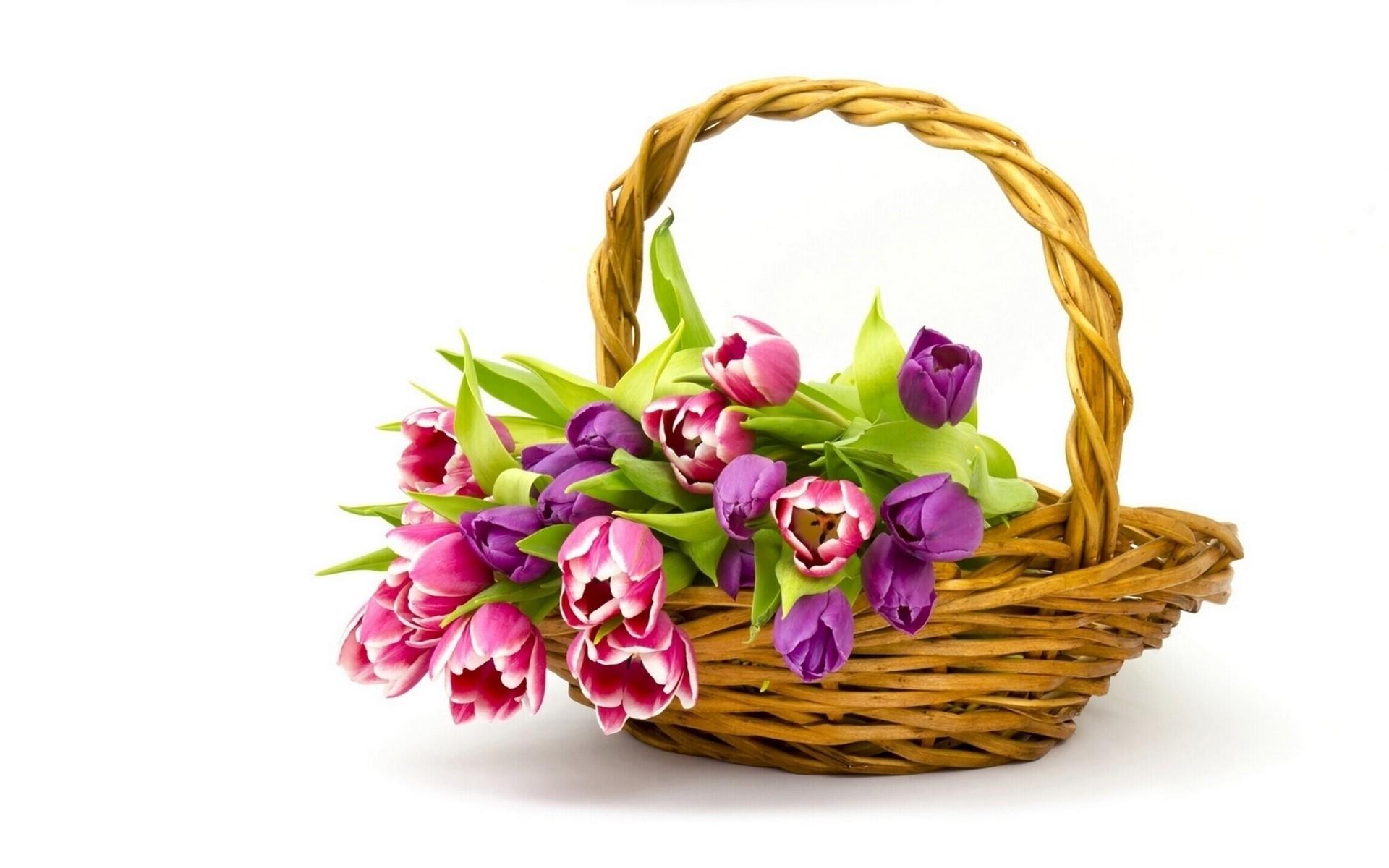 Женщина смешные, открытка 8 марта цветы в корзине