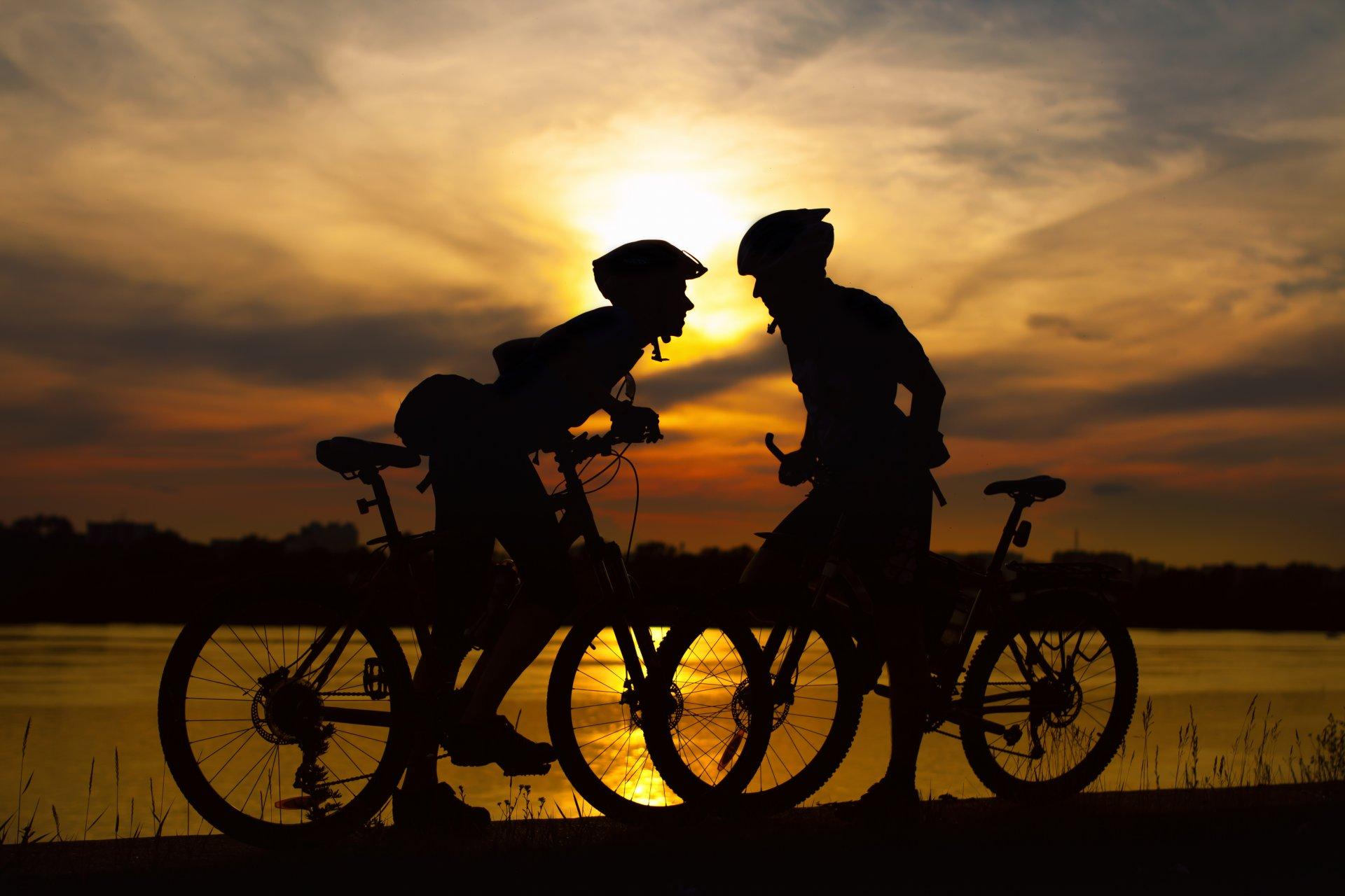 кормить нечем, картинка два велосипеда даже