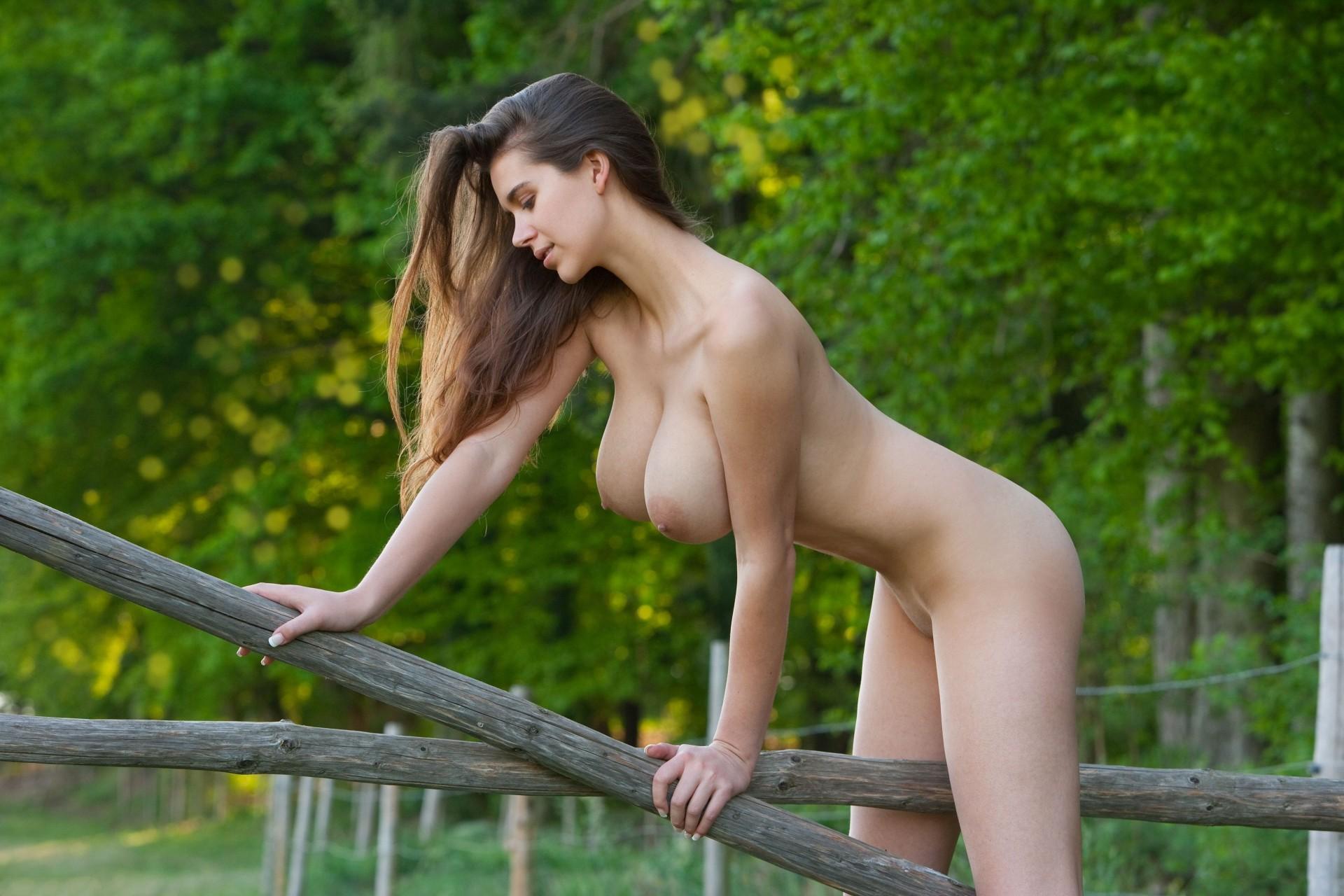 сходиться длинные голые девушки видео эшелон
