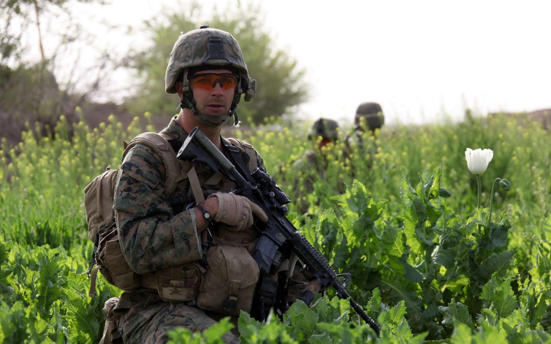 армия солдаты военные картинки это