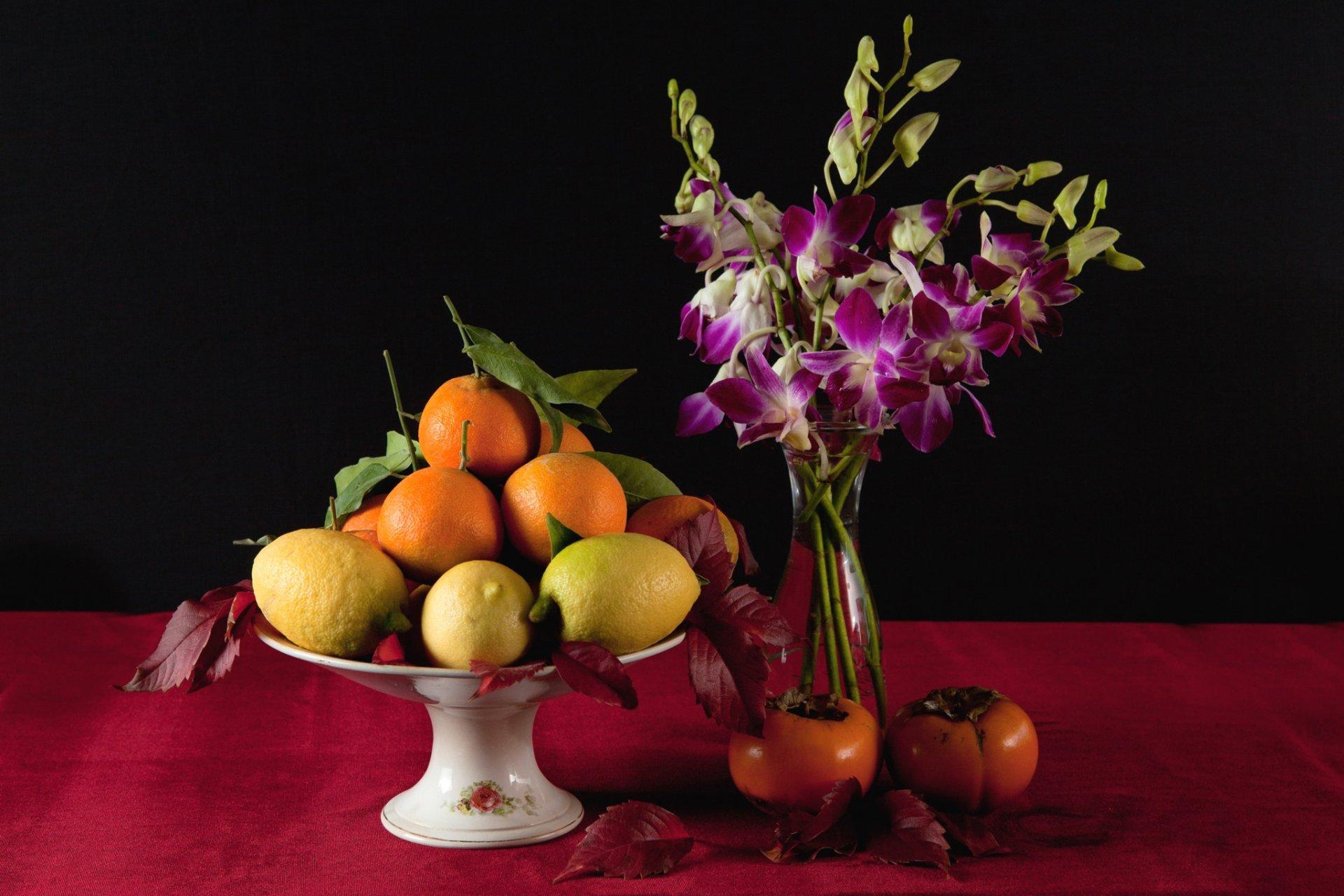 Тюльпаны обои для рабочего стола картинки цветов на