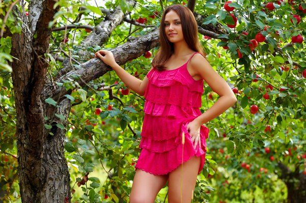 Model Zlatka known certain circles broke a lot of men's hearts beautiful clever hard-worker erotic fields posing in the Apple orchard decent dress good figure and appearance raises the mood easily loo