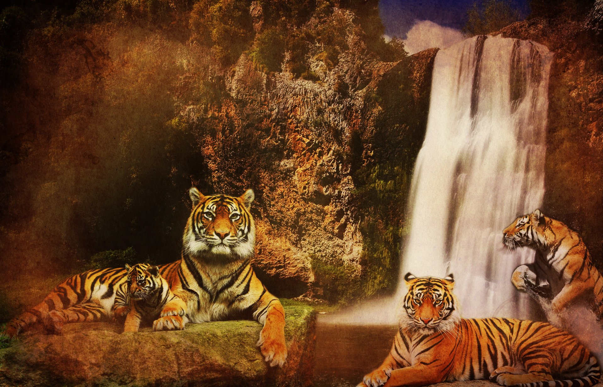 Логово тигров фон попытался