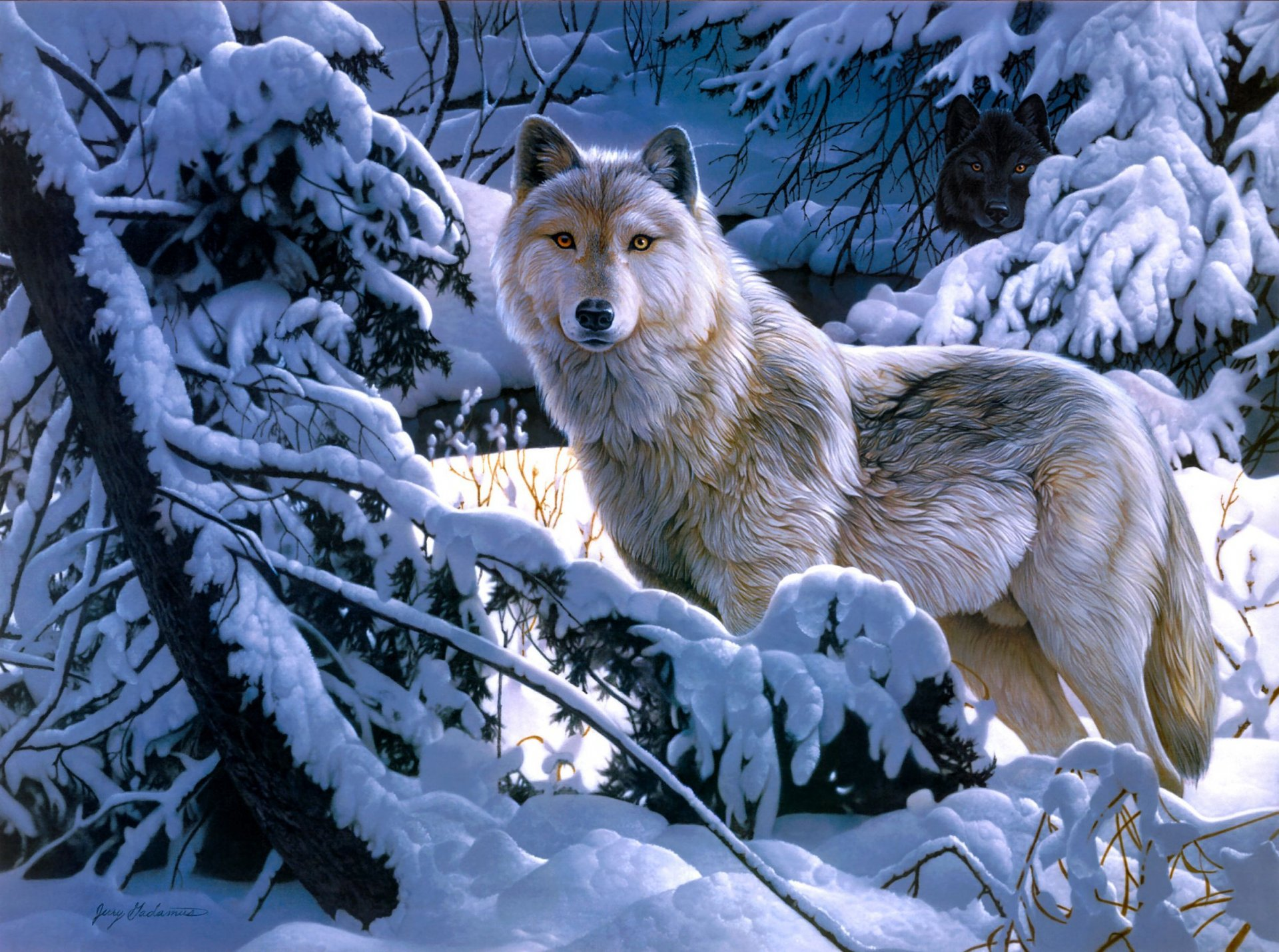 пожалуйста картинка лес волк снег милую