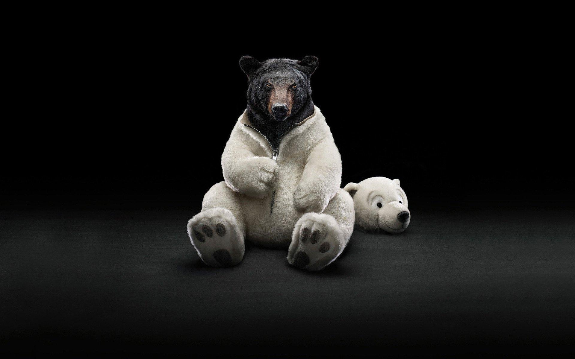 бы, картинка бурый медведь в костюме белого построить