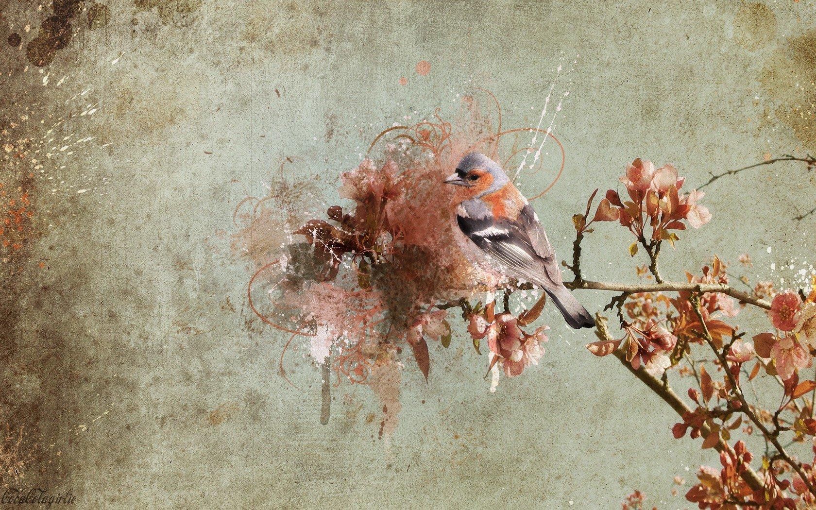 Графика весна природа животные загрузить