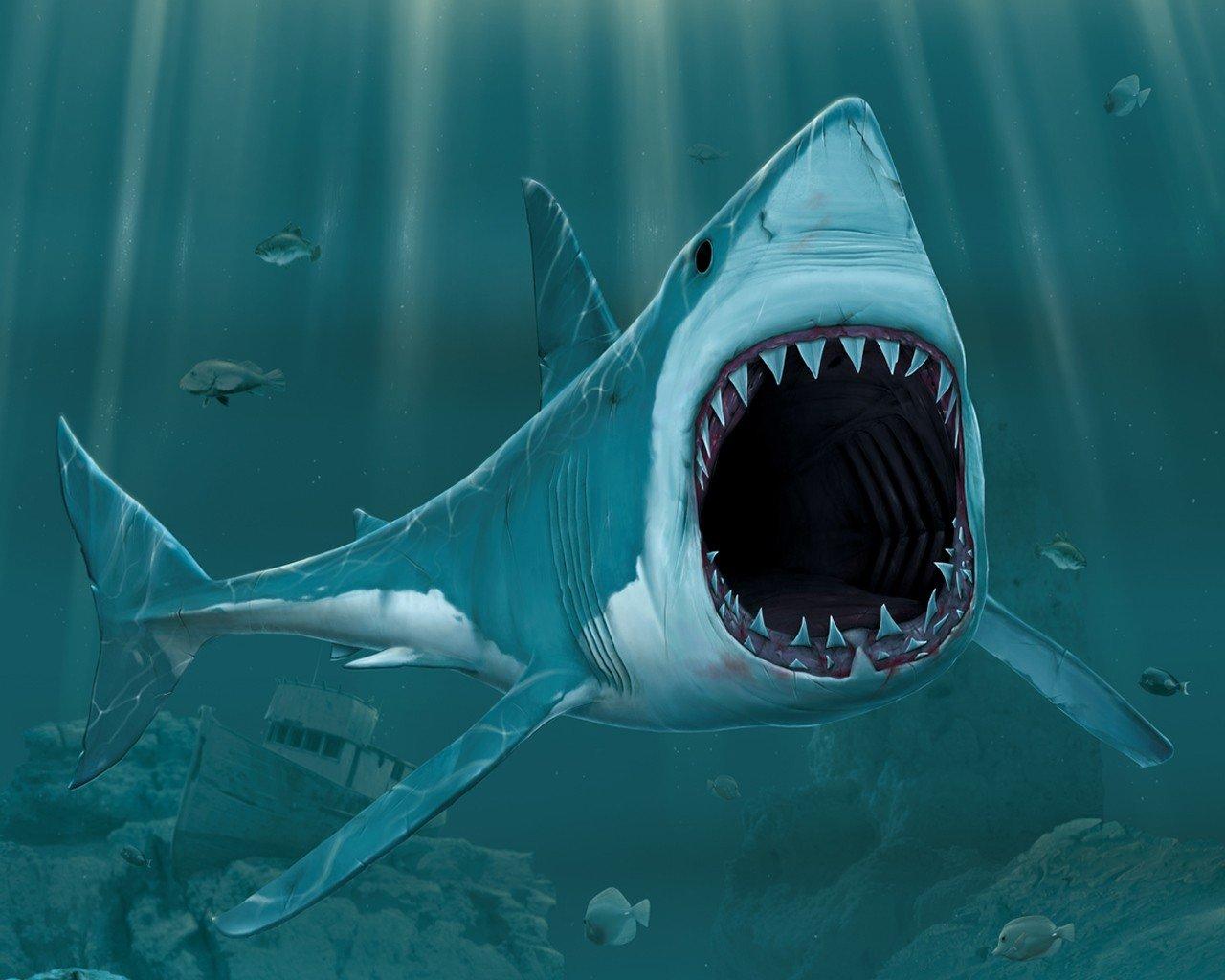 акулья пасть картинки смешать, постепенно добавляя