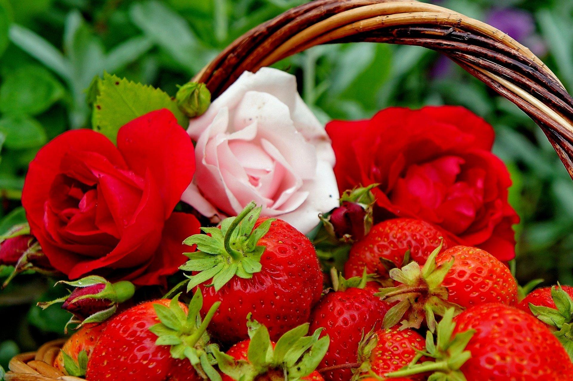 Цветы и фрукты картинки