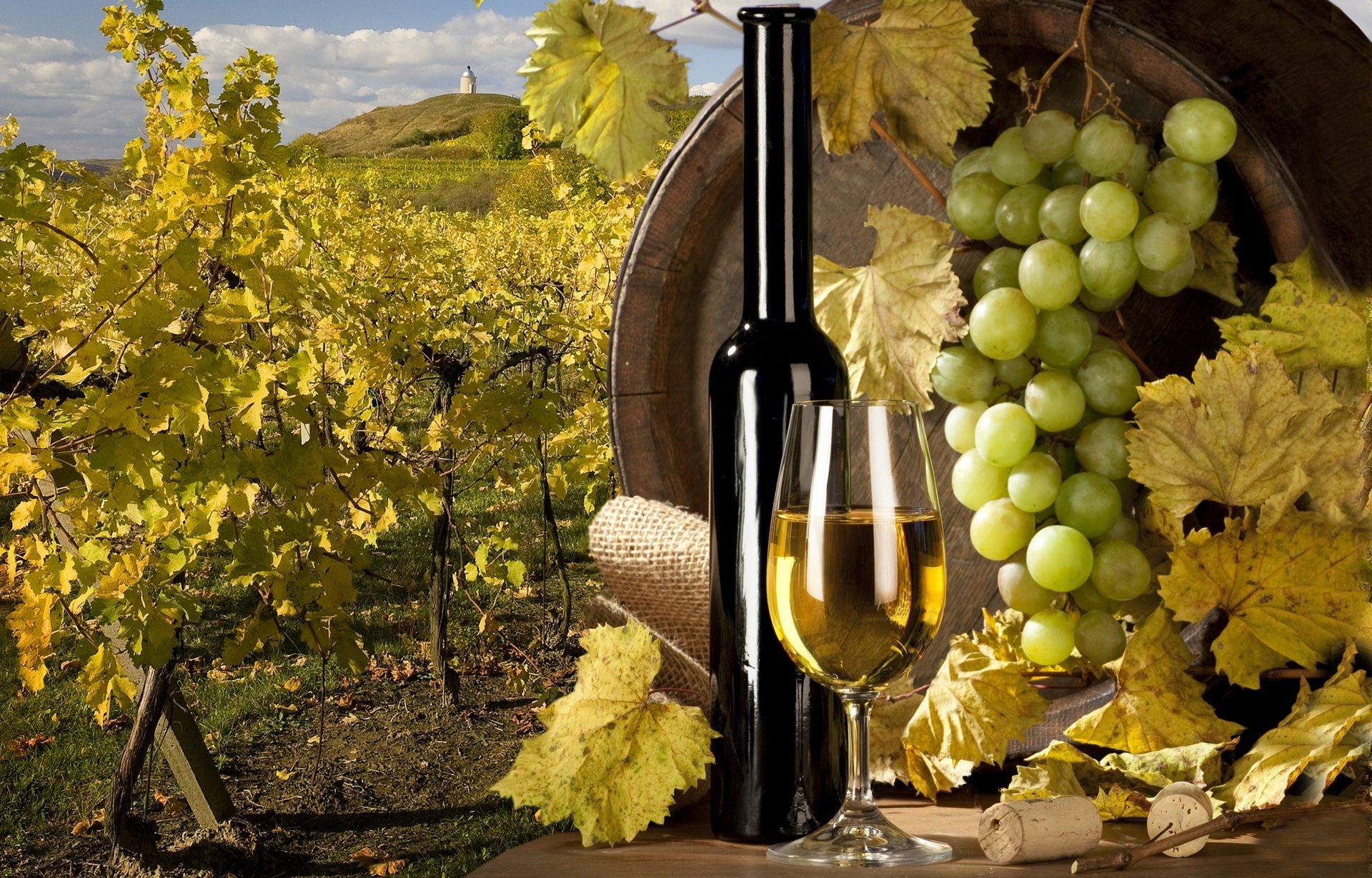 Обои Бутылки, бочки, виноградники, виноград, вино. Разное foto 17