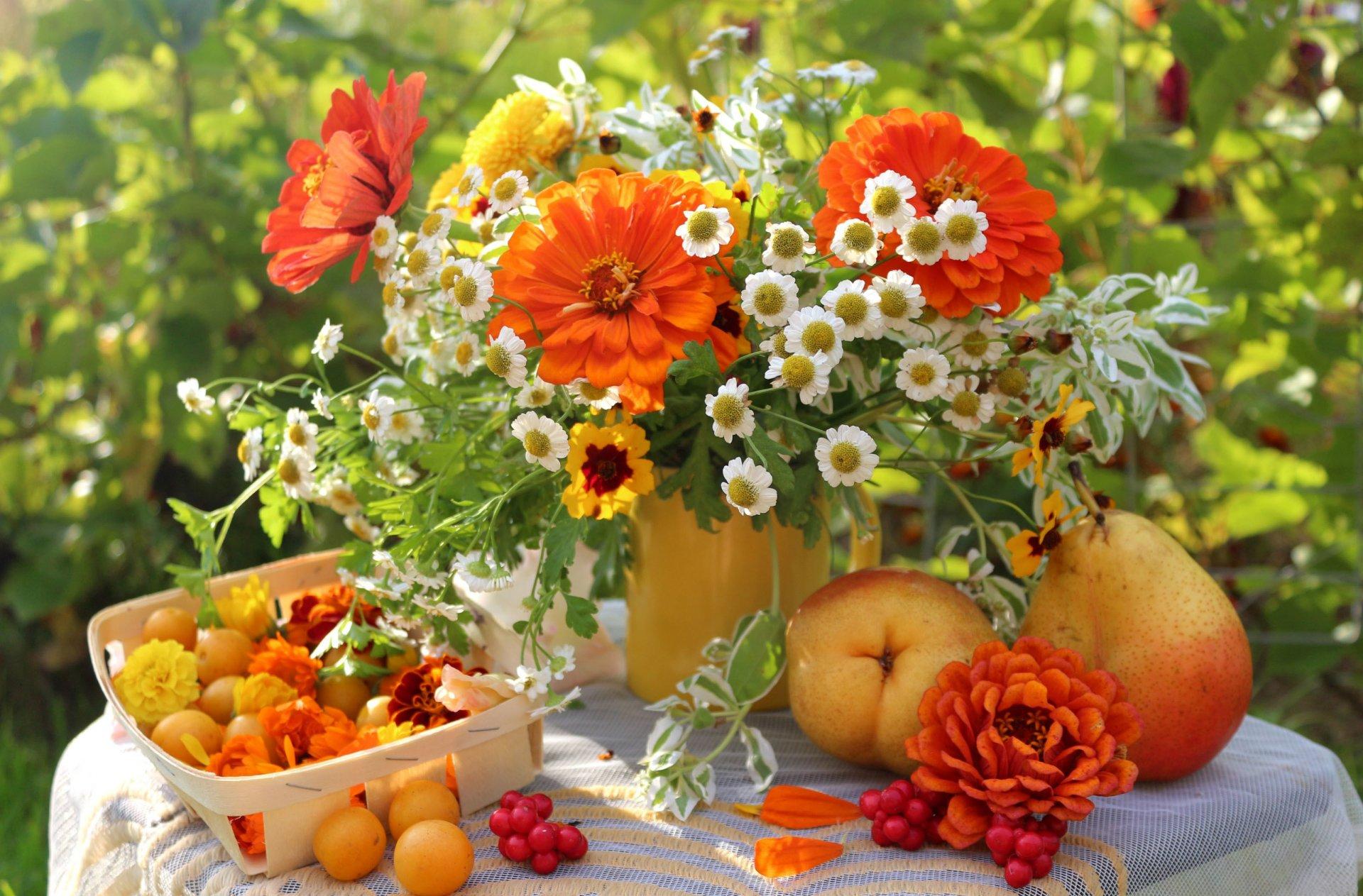 Осенние цветы картинки на рабочий стол самые красивые