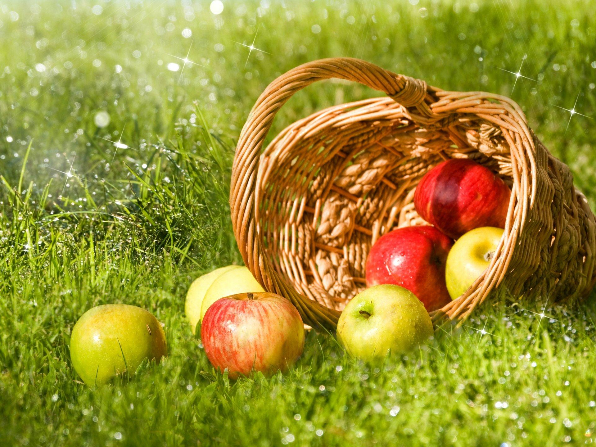 картинки на тему яблок отдельно