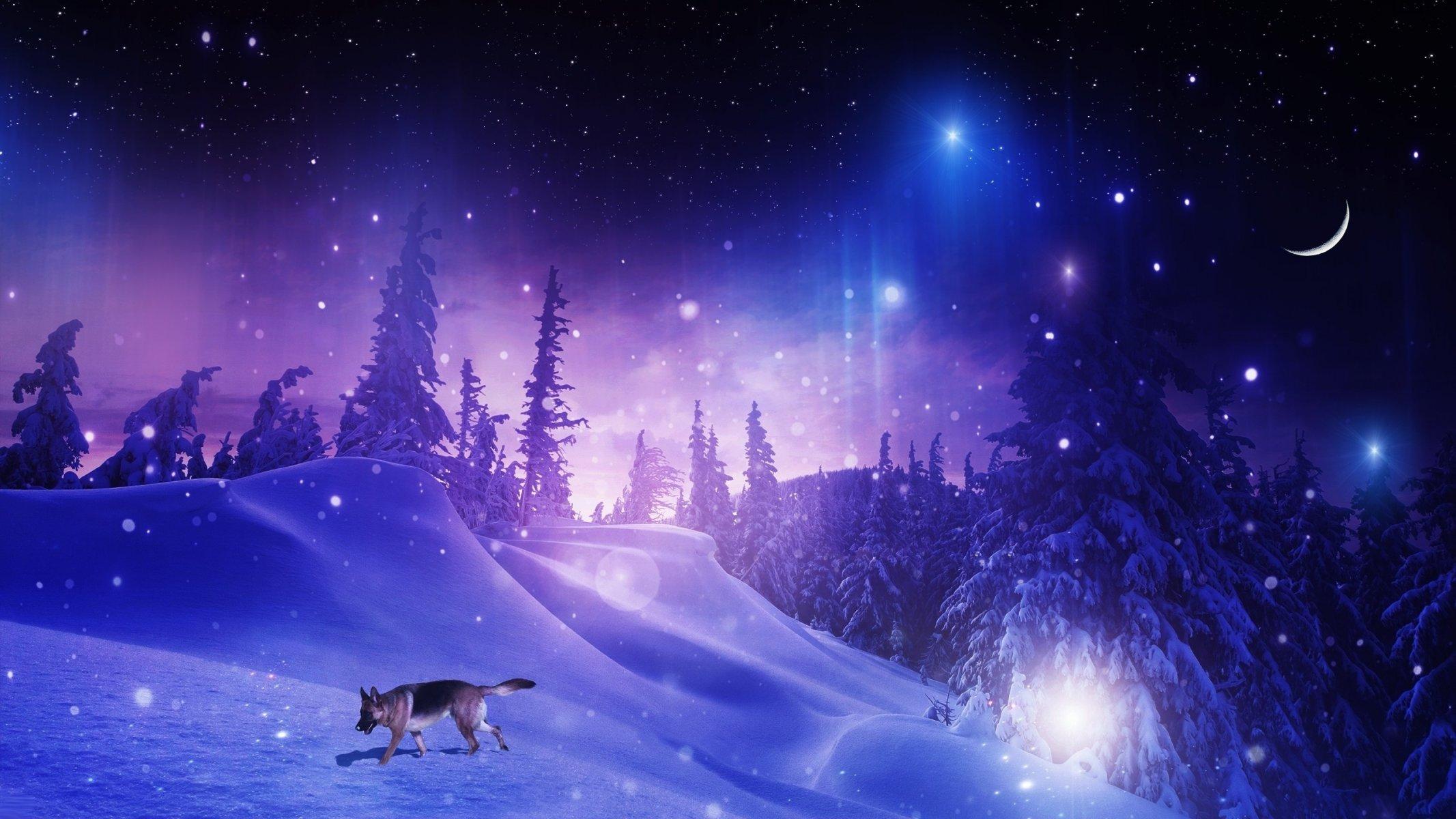 Ночь снег зима загрузить