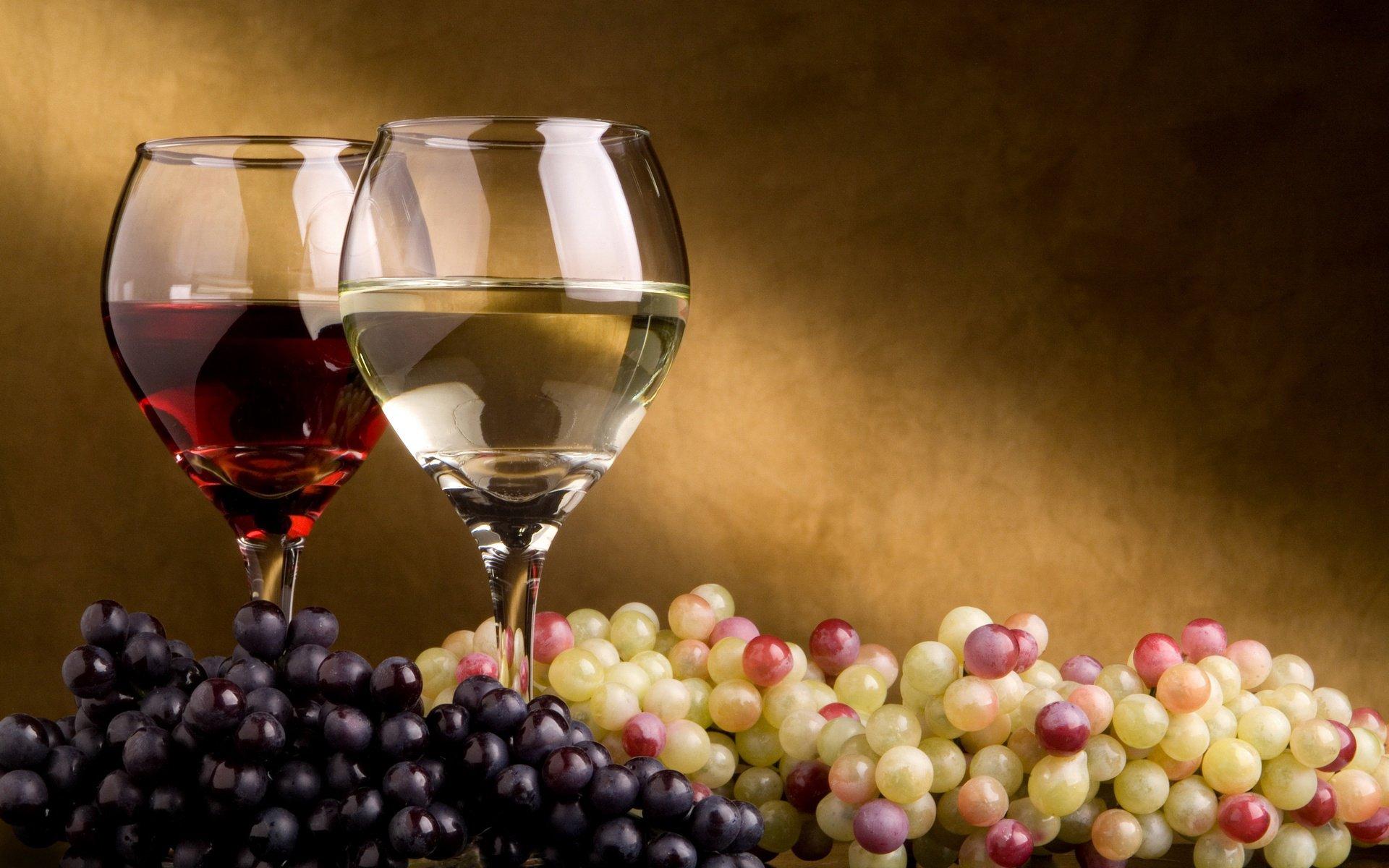 Вино на картинках
