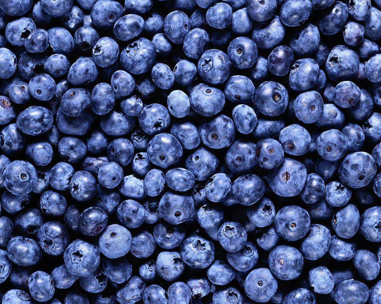 Черные ягоды загрузить