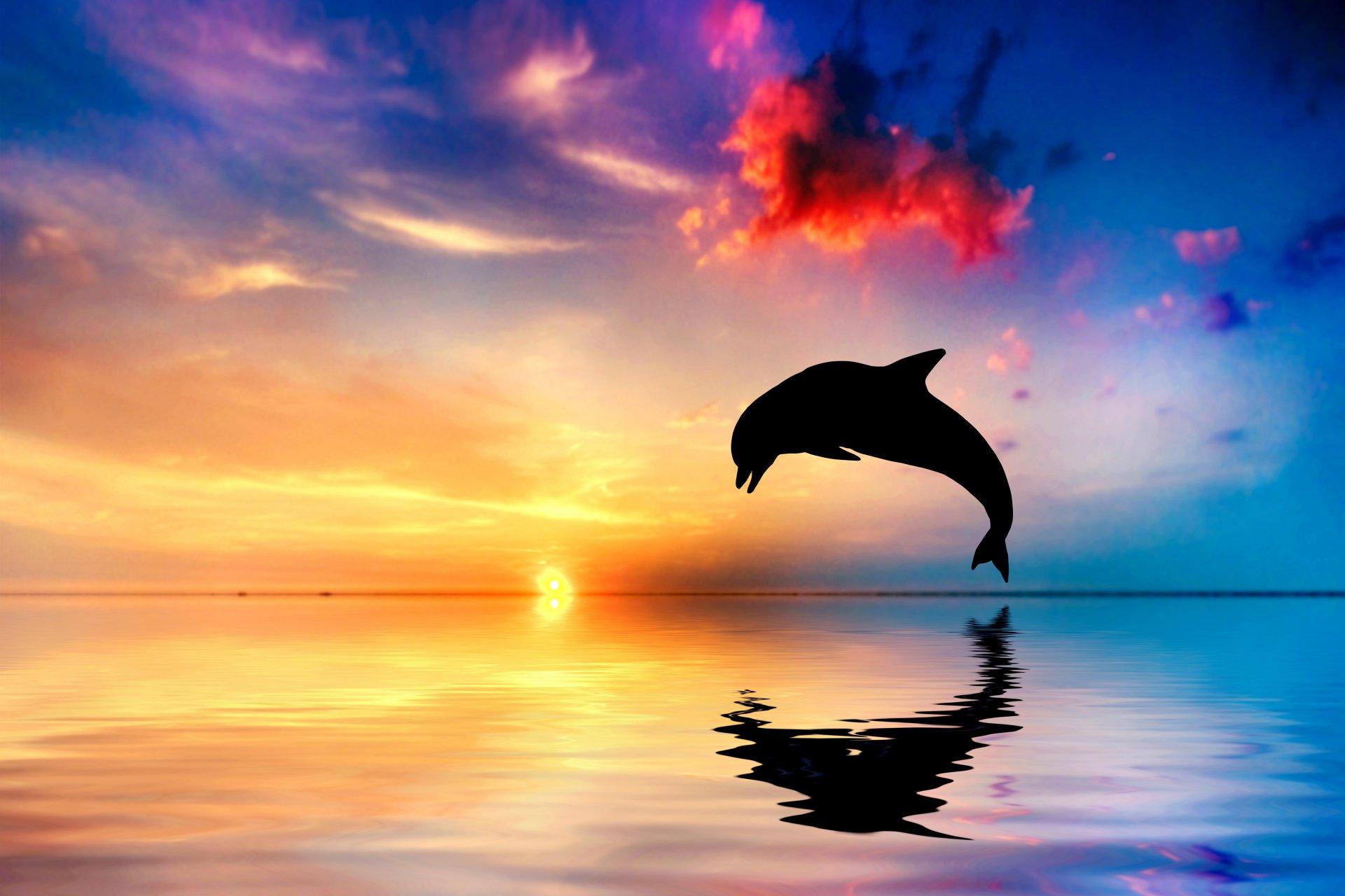 Стихами, открытка море закат