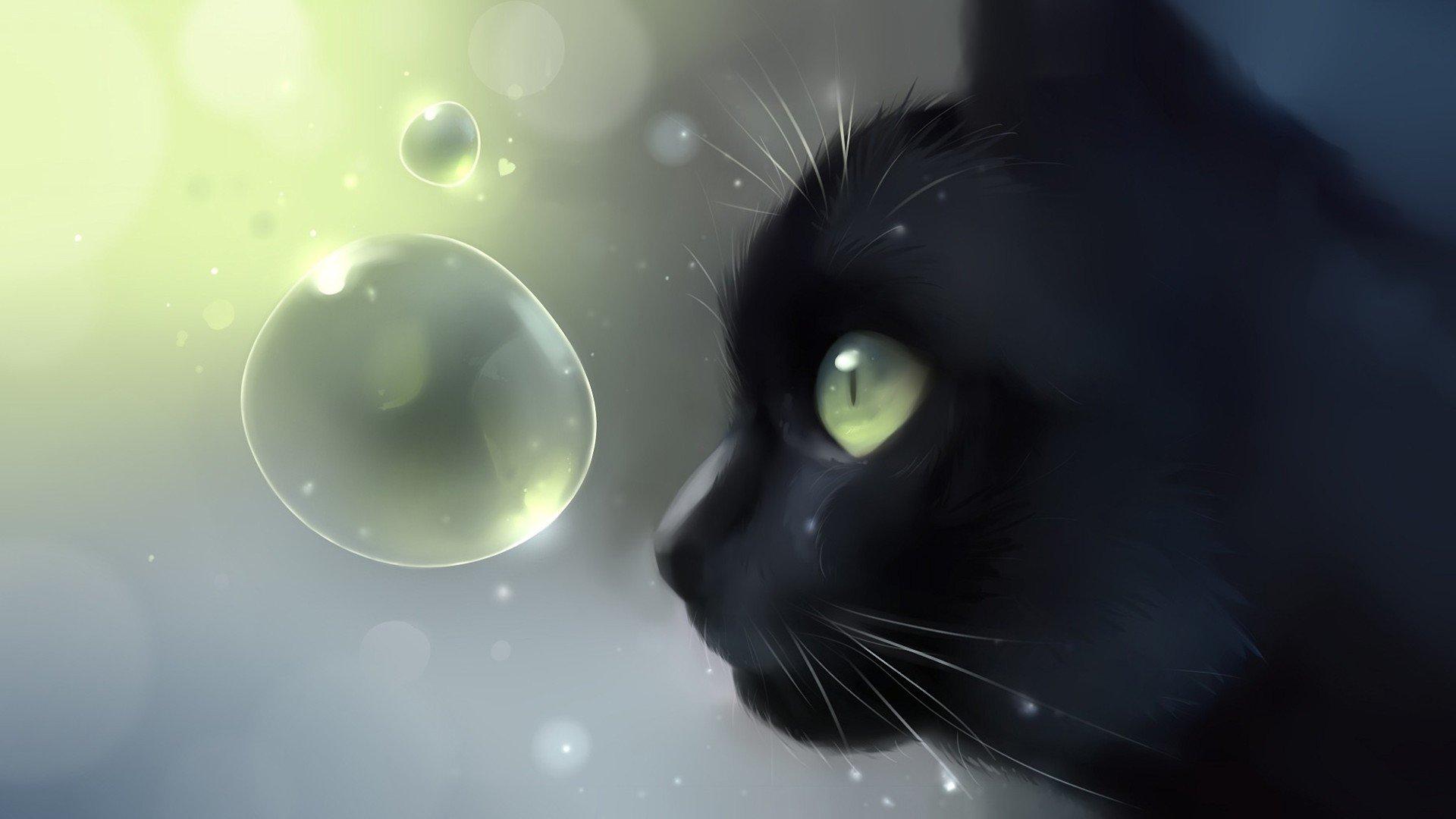Пионовидные, живые картинки для кошек на компьютере