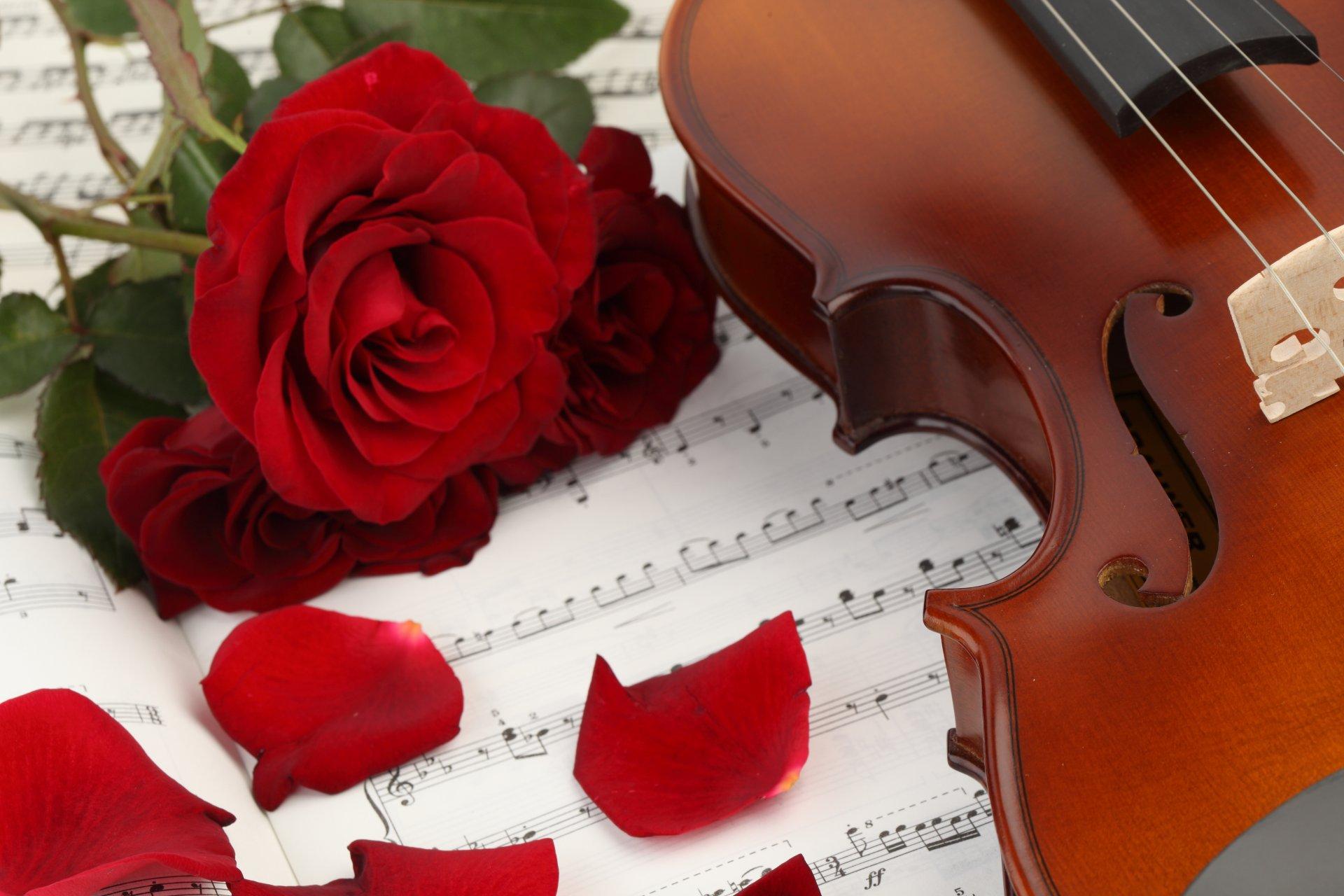 Год, открытка с розой музыкальная