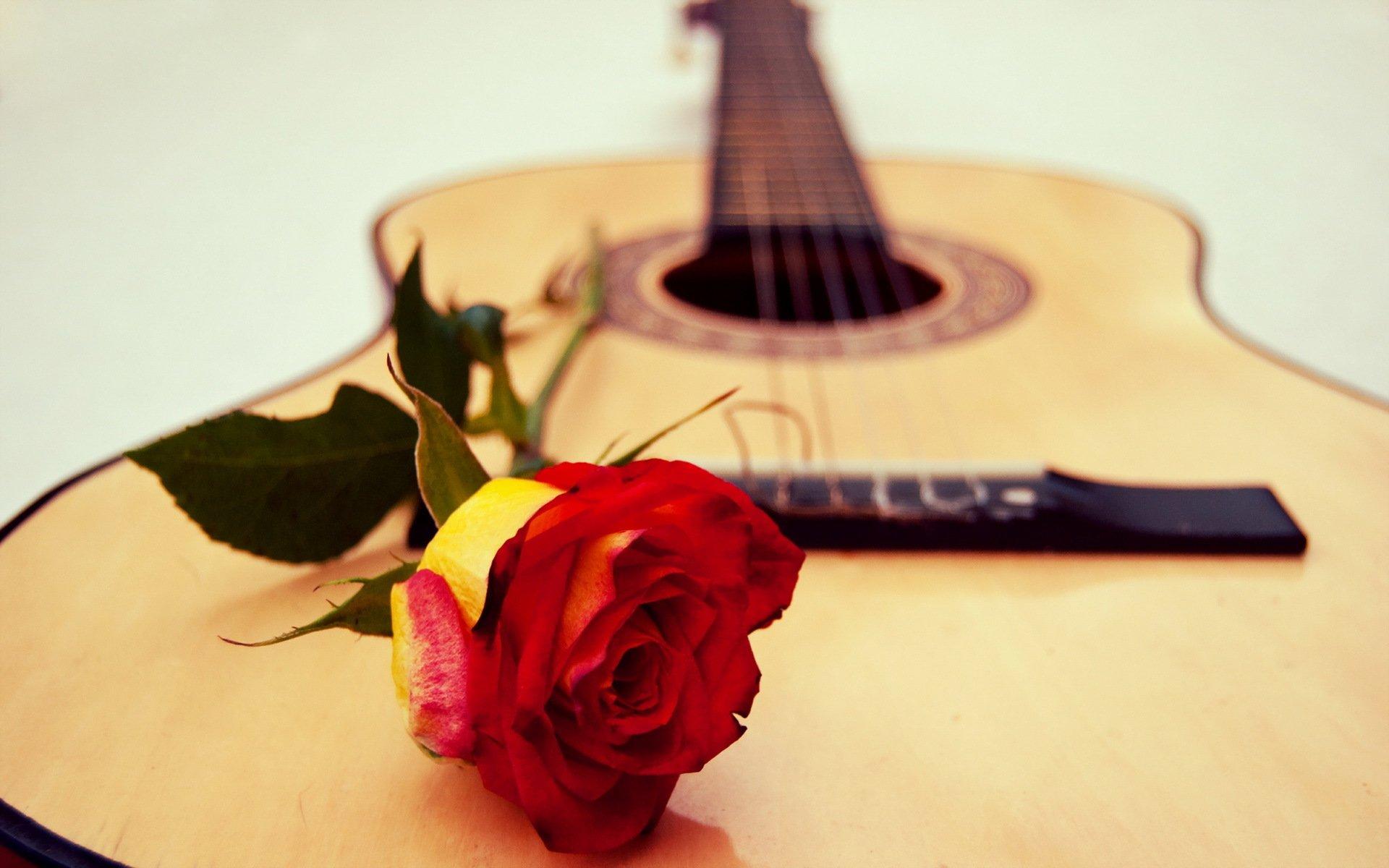 сердца гитара бесплатно