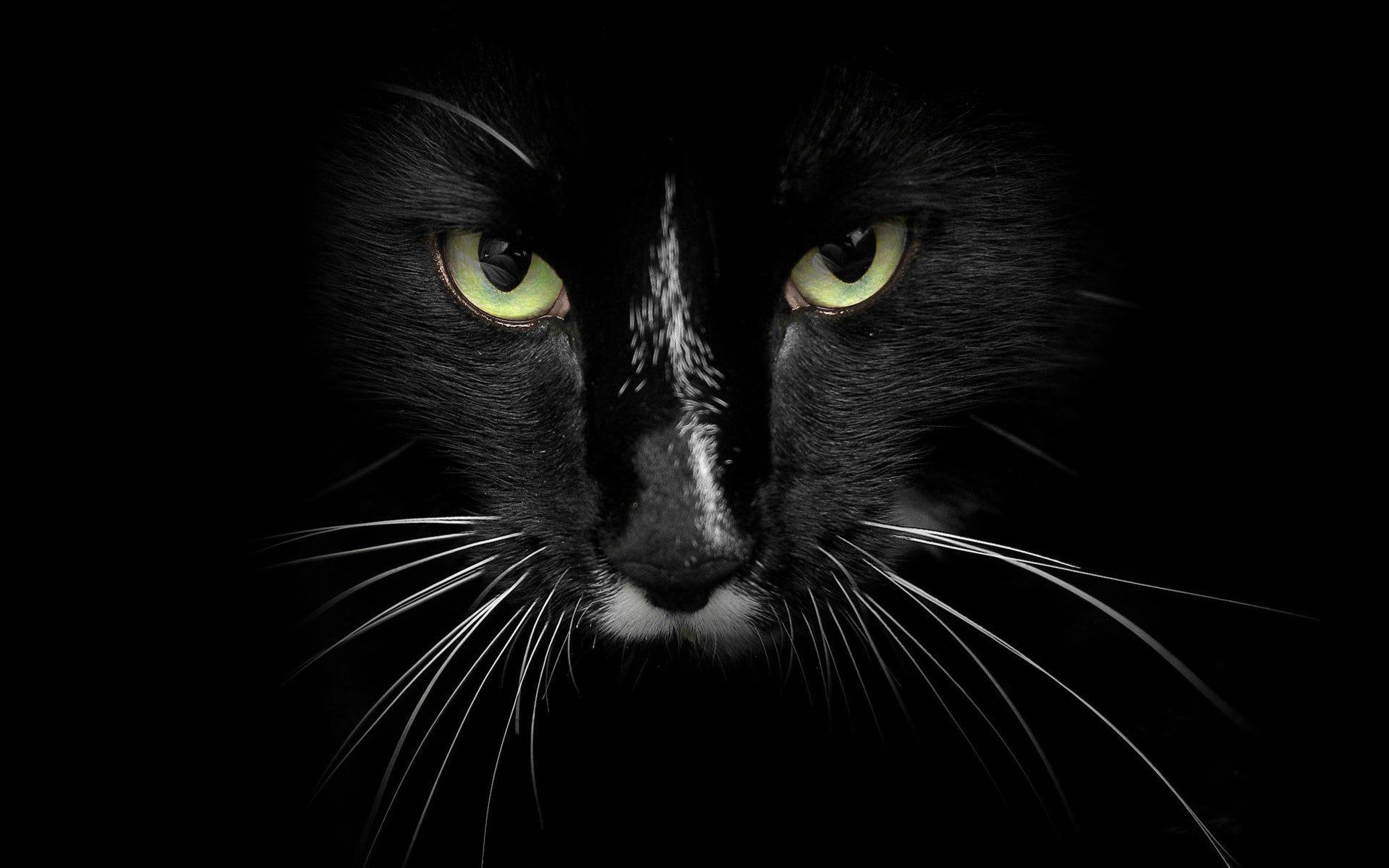 Крутые черные картинки