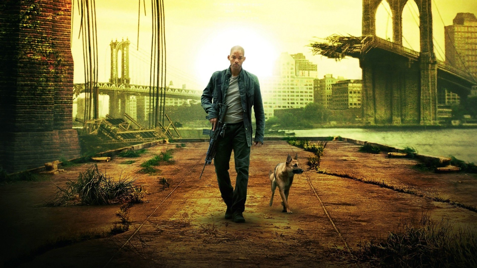 i am legend summary Will smith in i am legend r ichard matheson's sci-fi novel about the last man left alive on earth has been filmed twice, most memorably as the omega man with charlton heston in 1971.