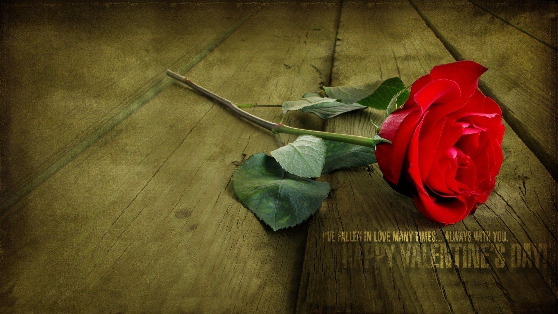 фетром одинокая роза открытка маленькие они только