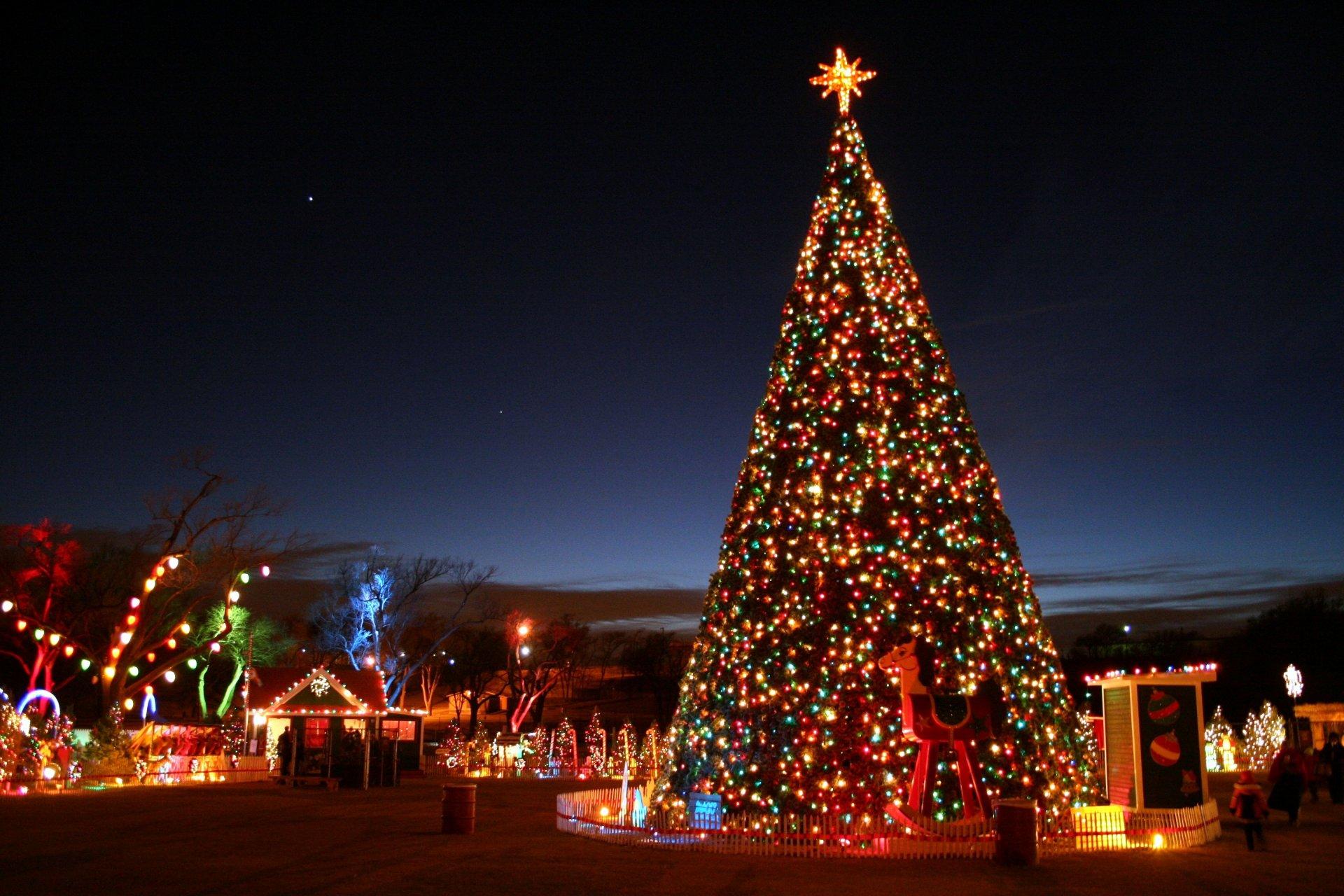 Новый год картинки елка, координатам