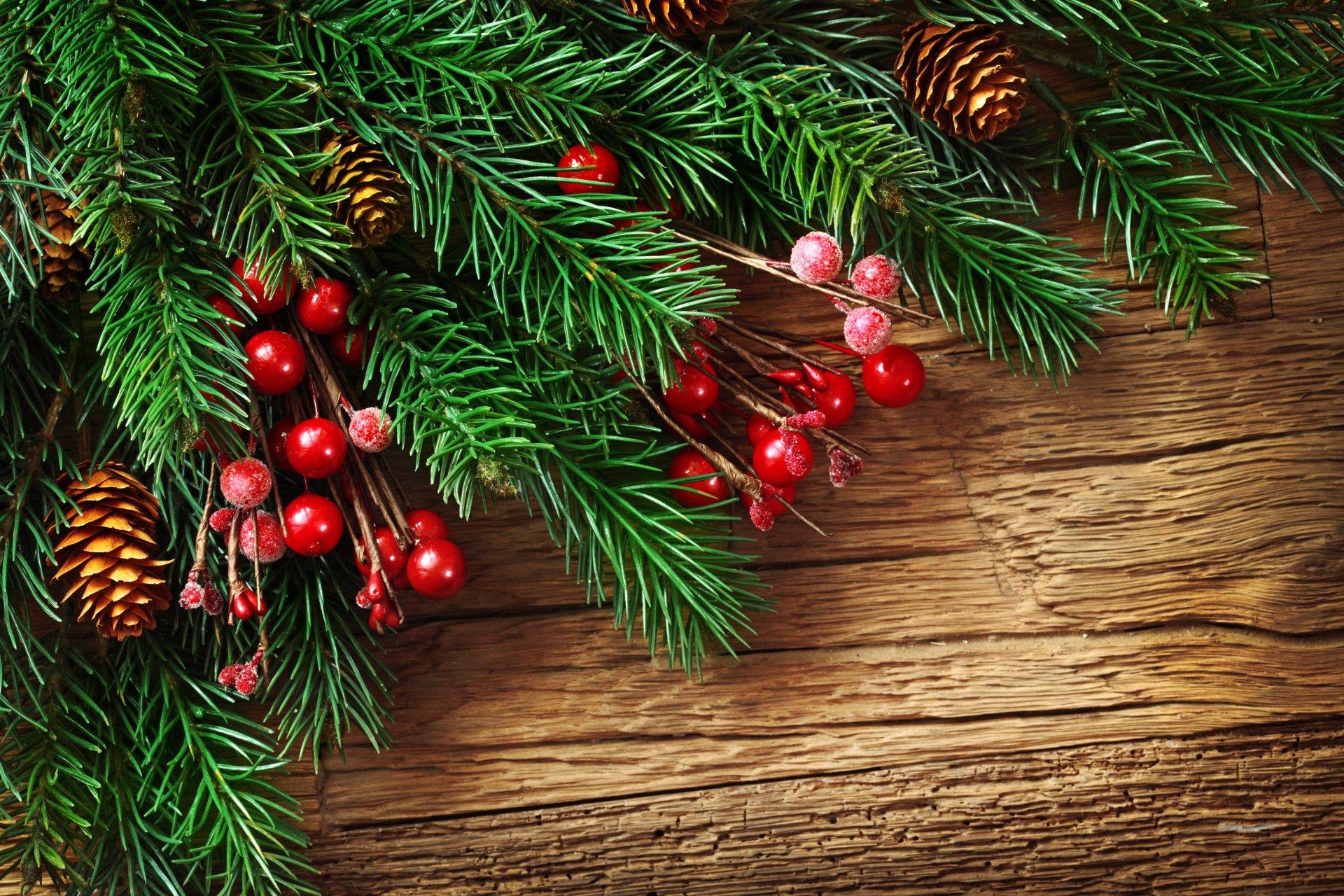 Новогодние открытки с ветками ели, днем медика приколом