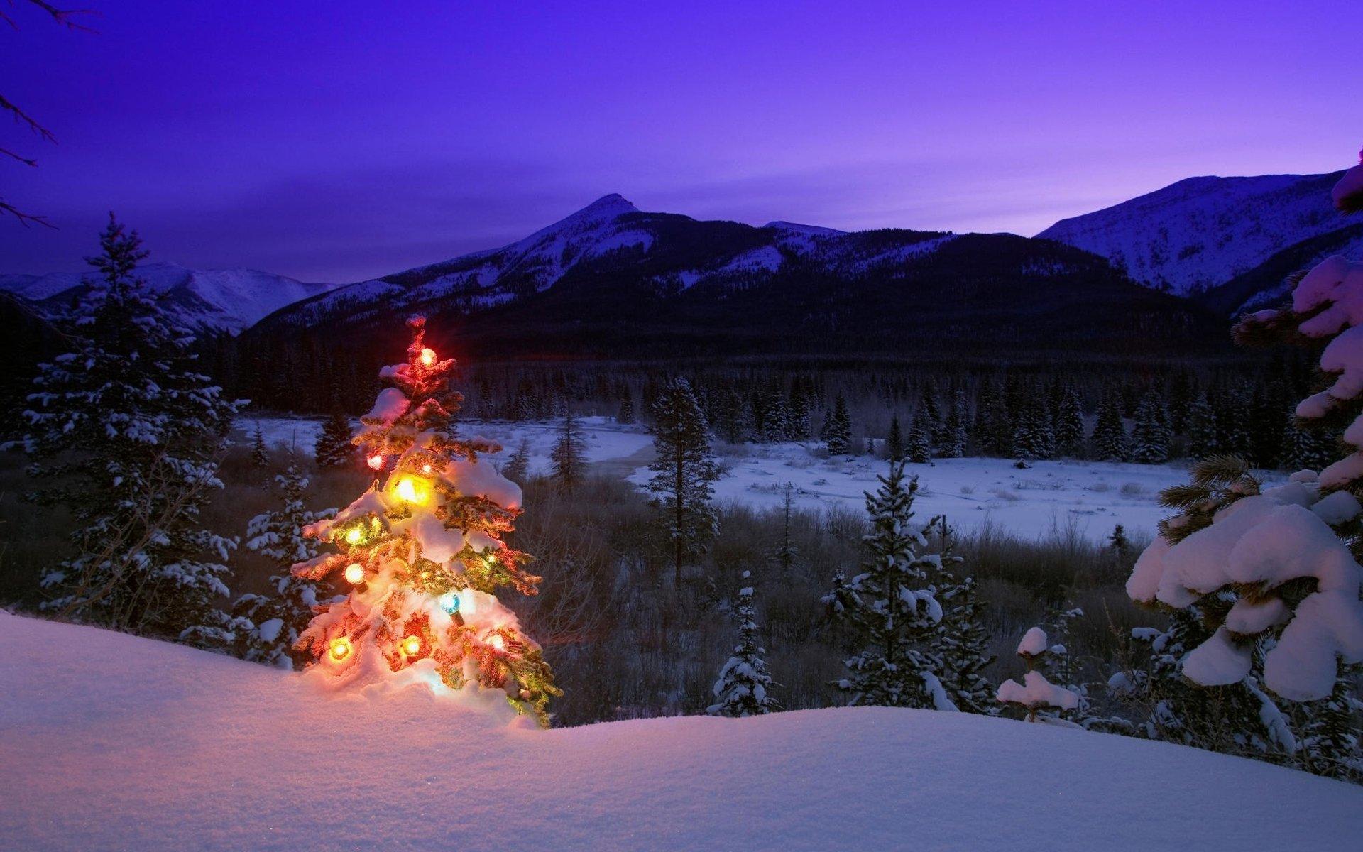 подобных картинки зима природа новый год этим можно справиться