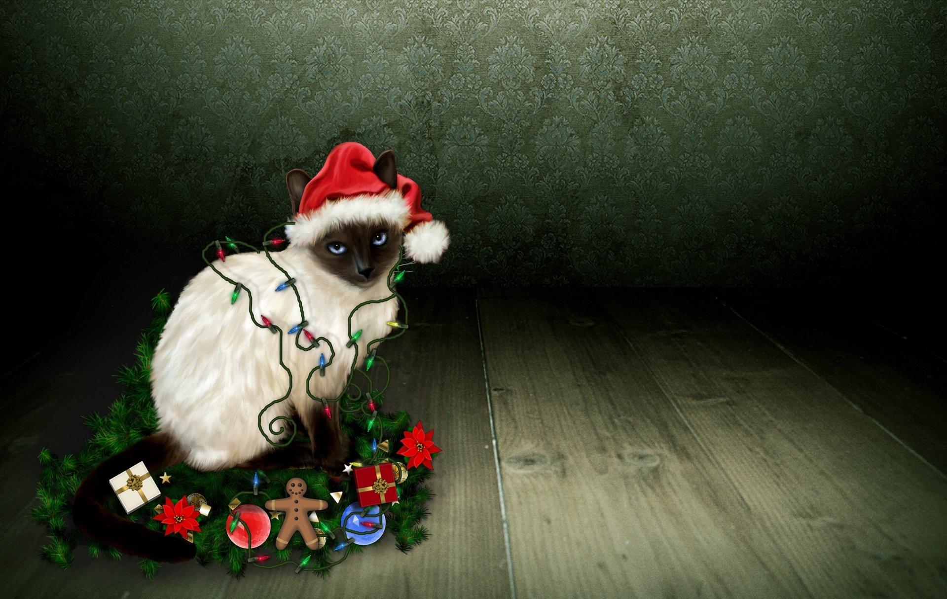 новогодние обои на рабочий стол год мыши фотографы нижневартовске