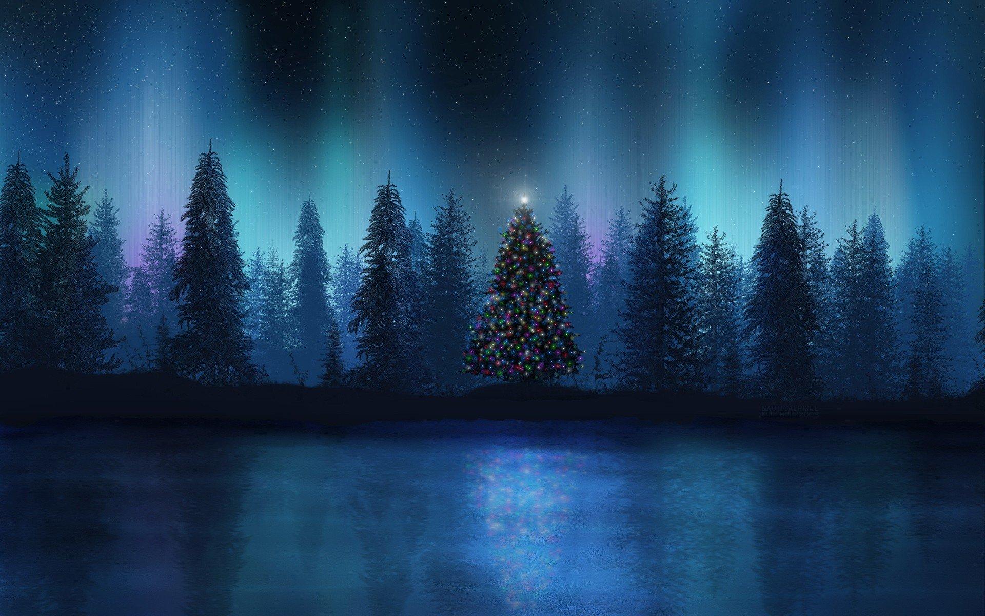 природа деревья ель небо звезды загрузить