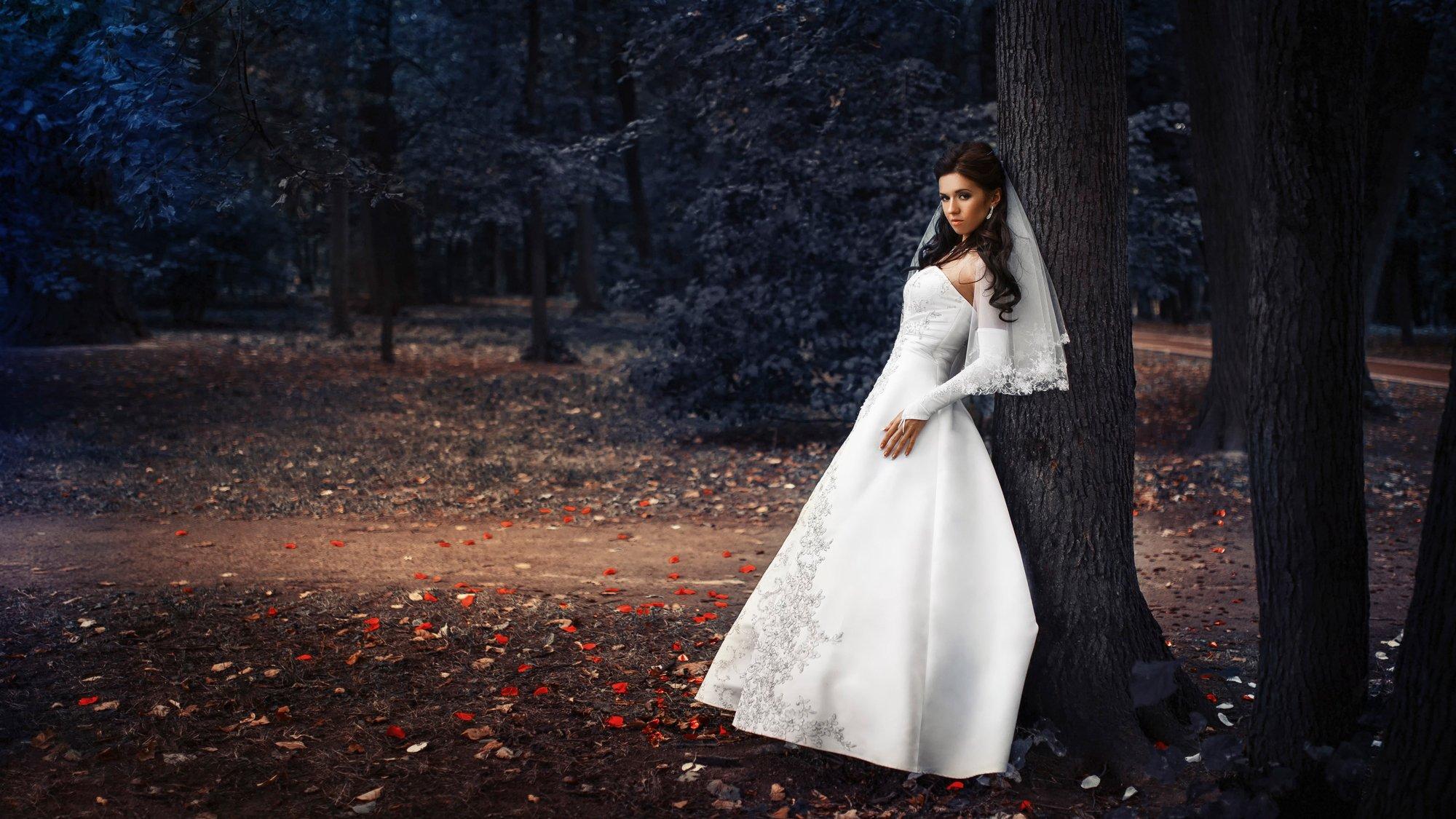 свадебное платье девушка туфли осень загрузить