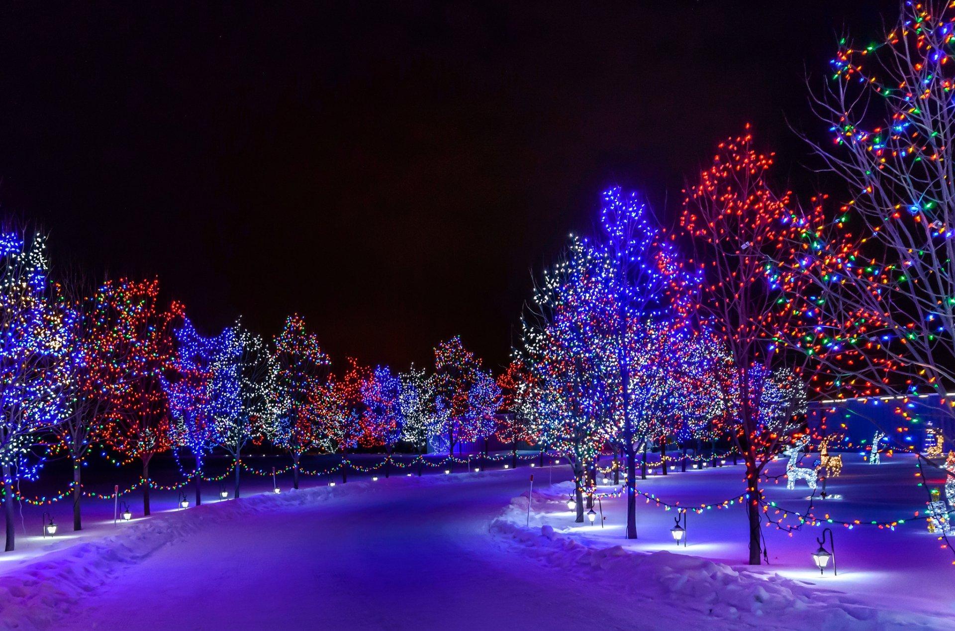 Картинки с новым годом зима и снег