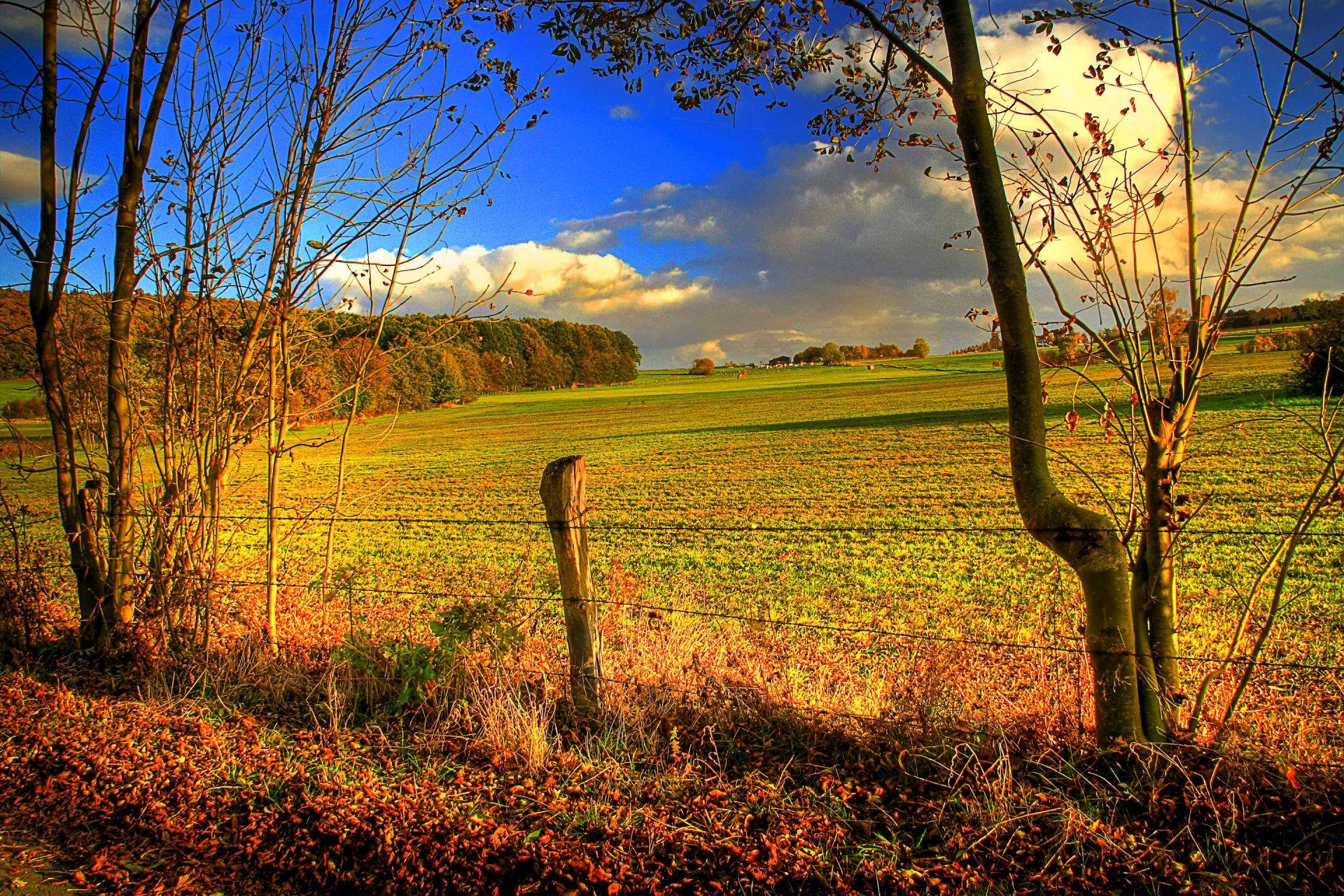 дорога сверхширокой фото полей в сентябре для фотографий вот марина