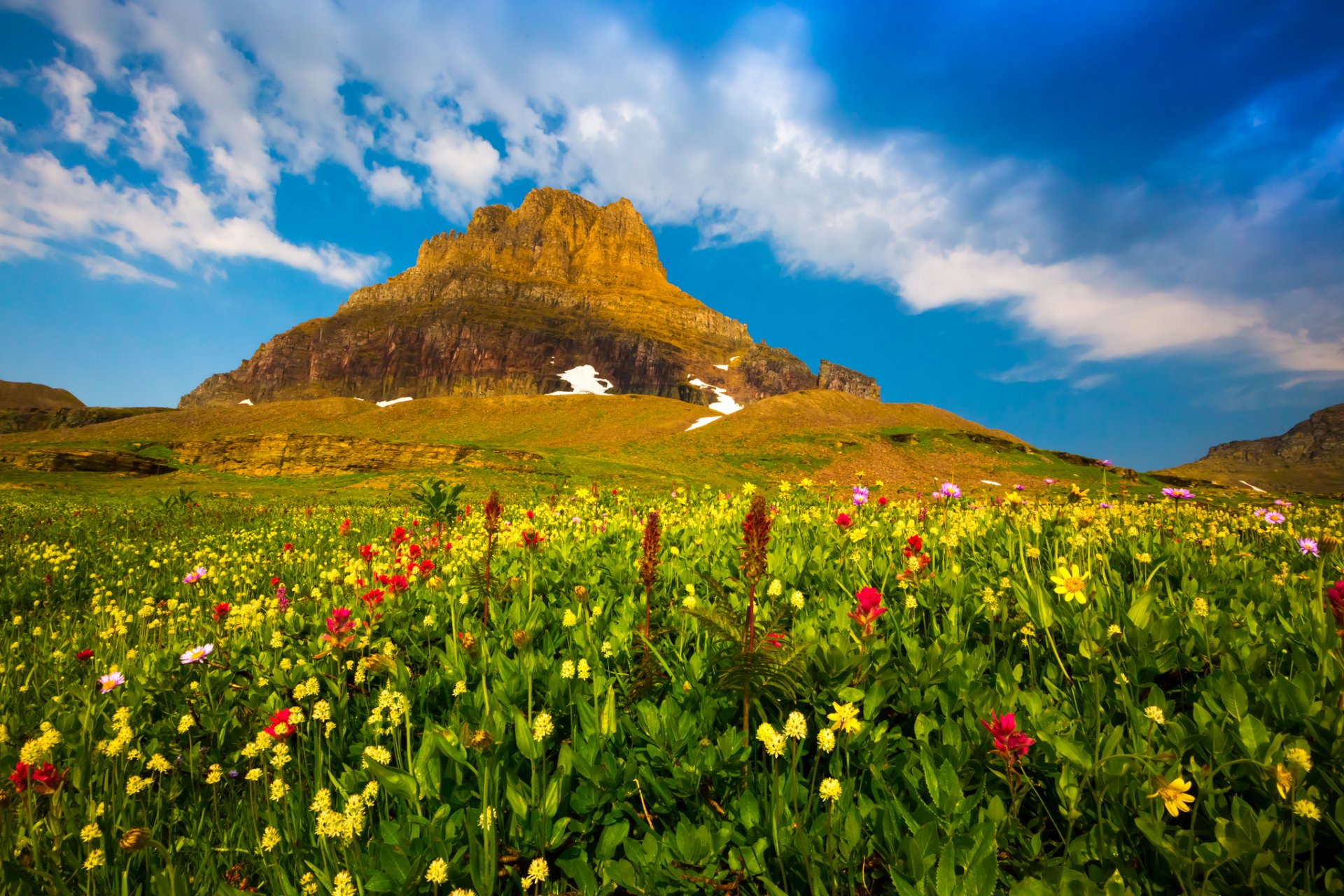 этой цветущие горы картинка показали видео