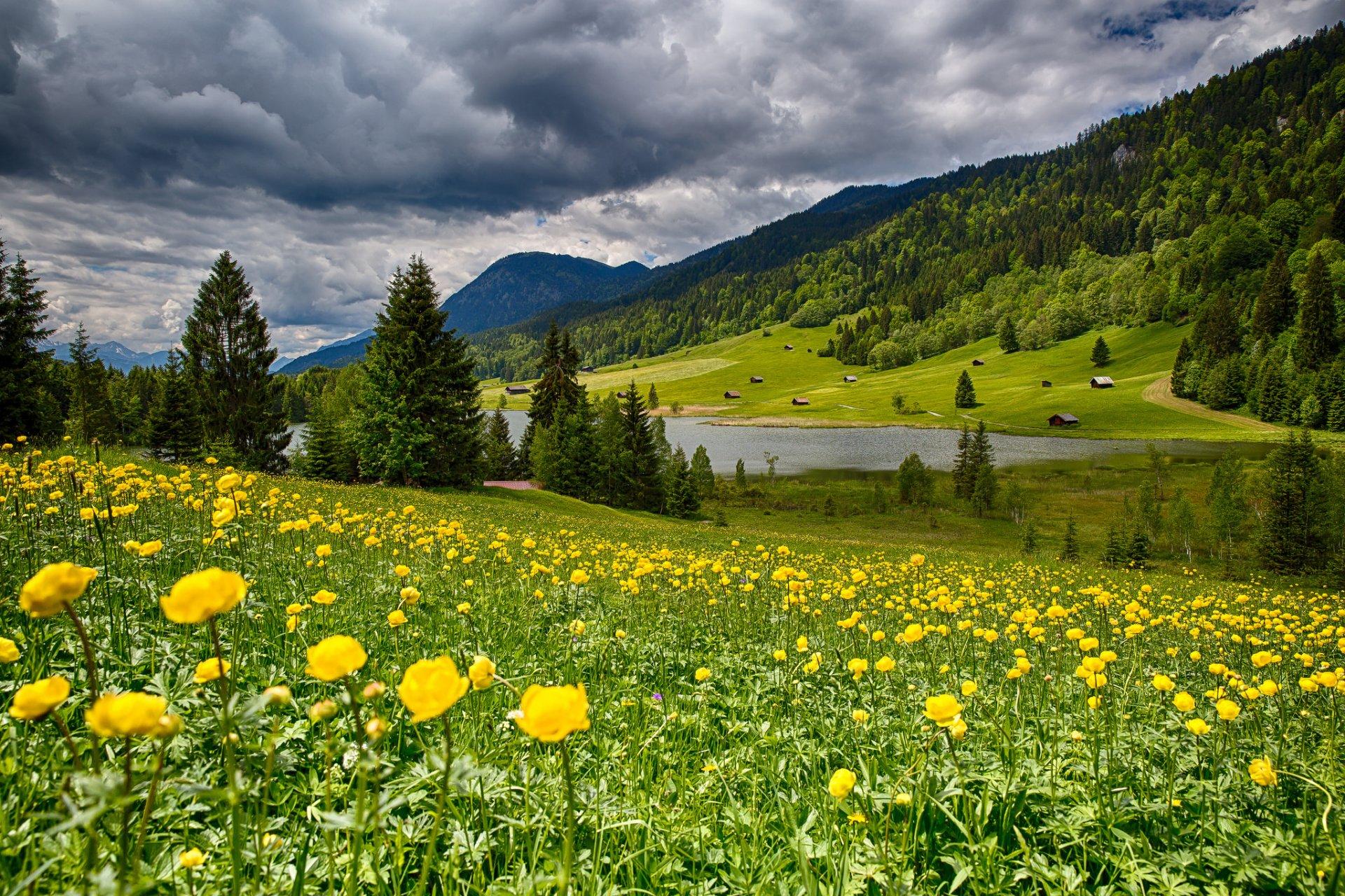 Облака, трава, цветы, озеро  № 1963104 бесплатно