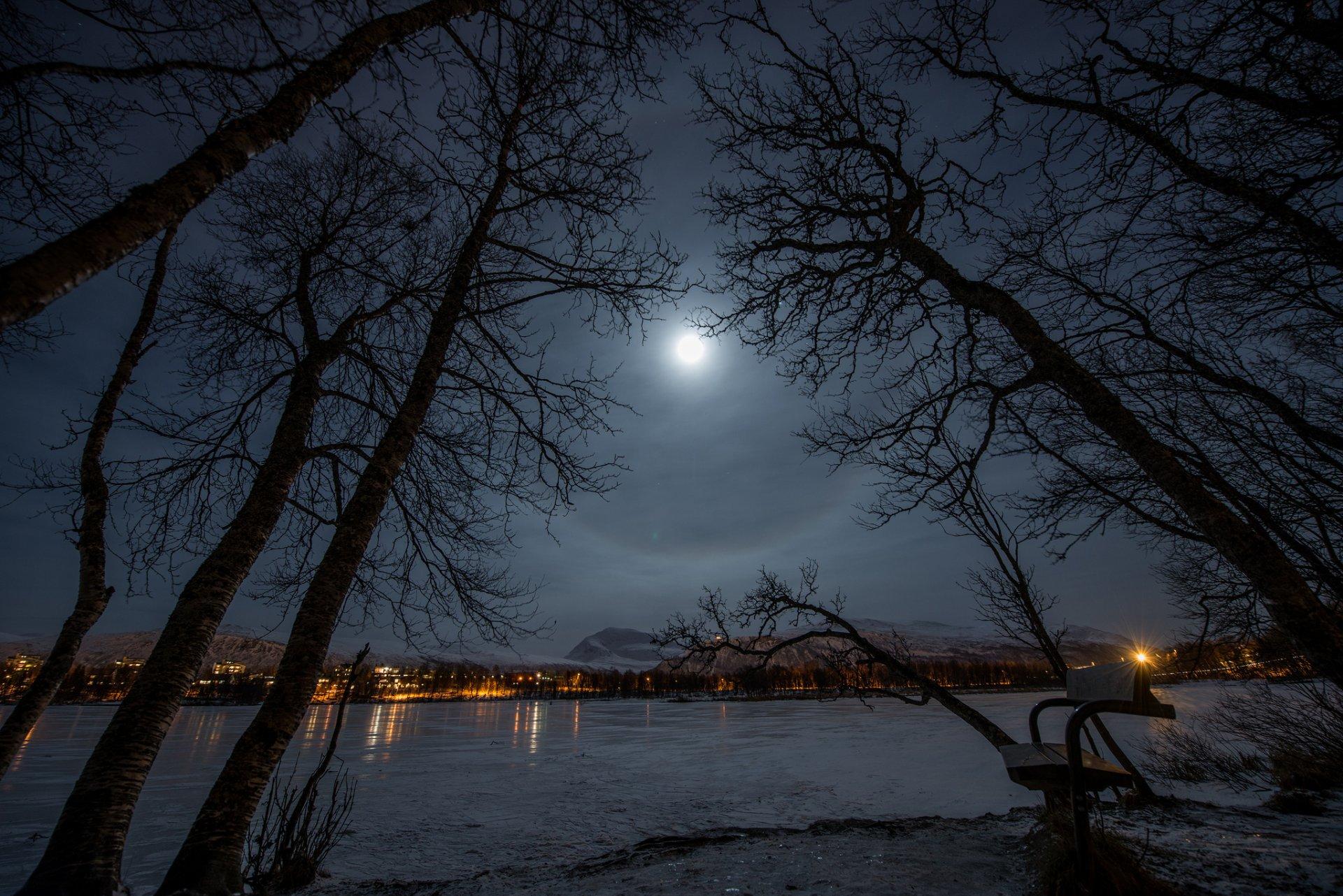 мосс лучшие фото недели рамблер пейзаж луна один