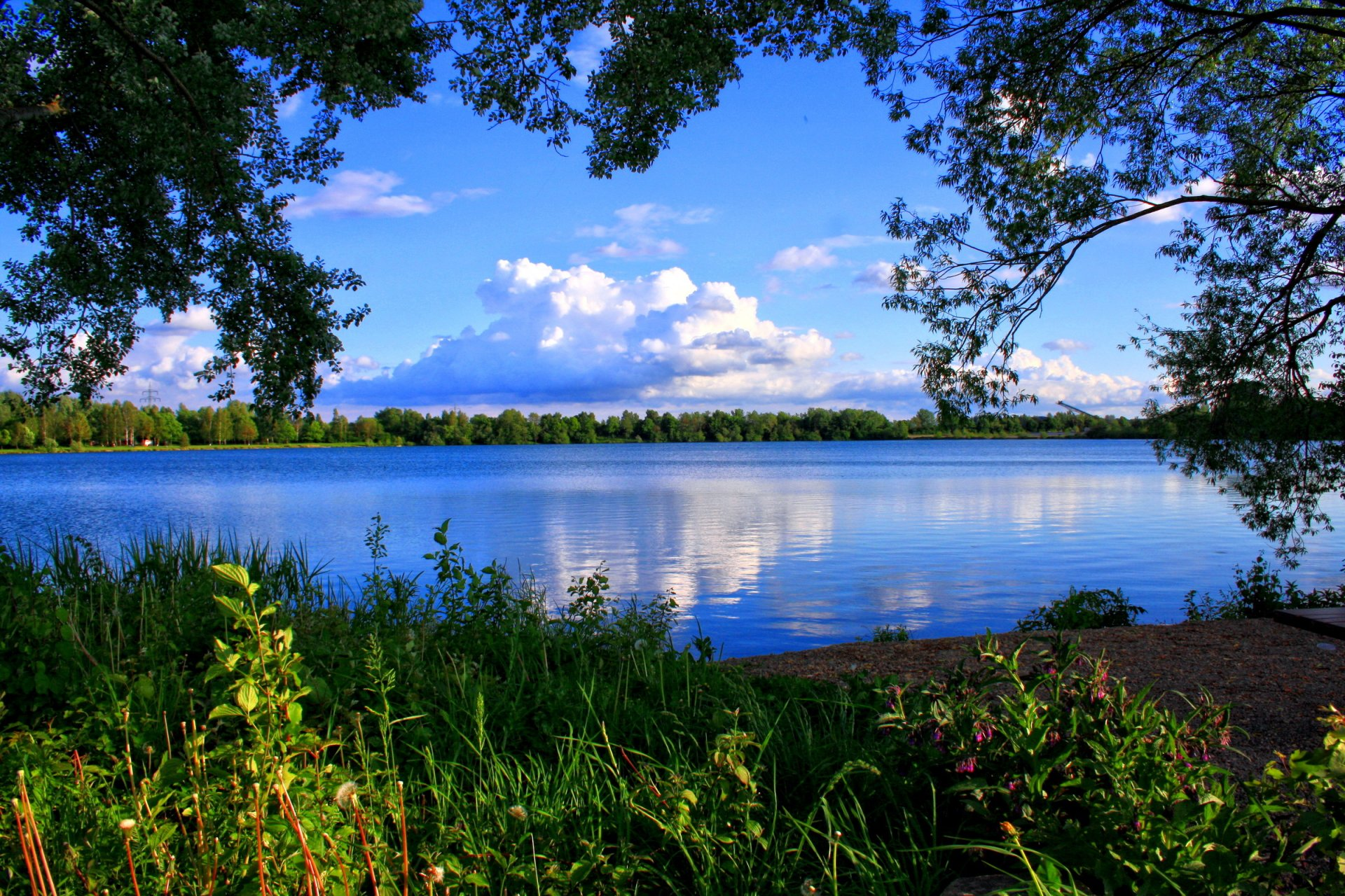 картинки на рабочий стол природа лес озера реки облака рисунке цветными