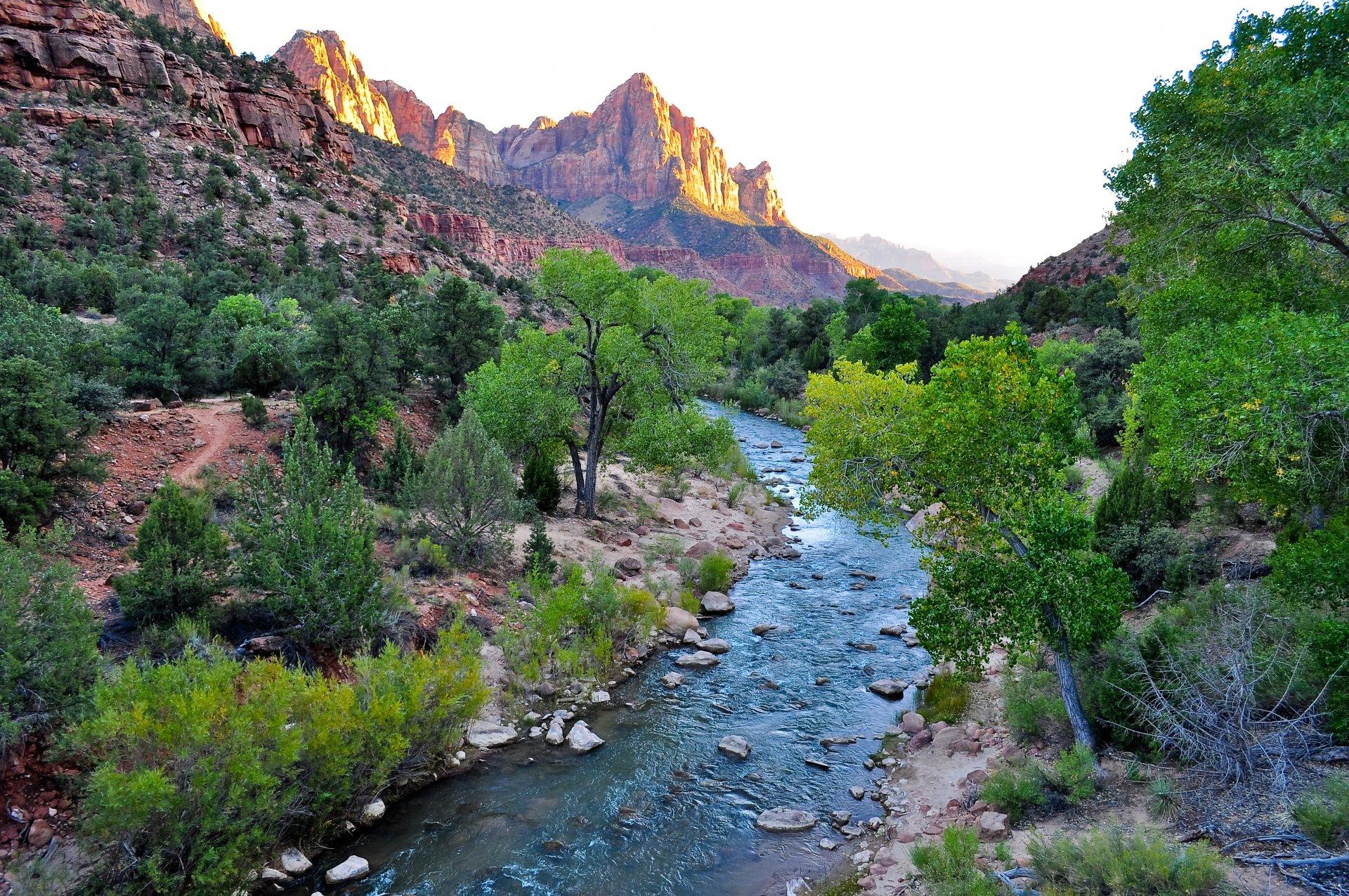Обои Zion national park, сша, ручей, водопад, юта, скалы. Природа foto 15
