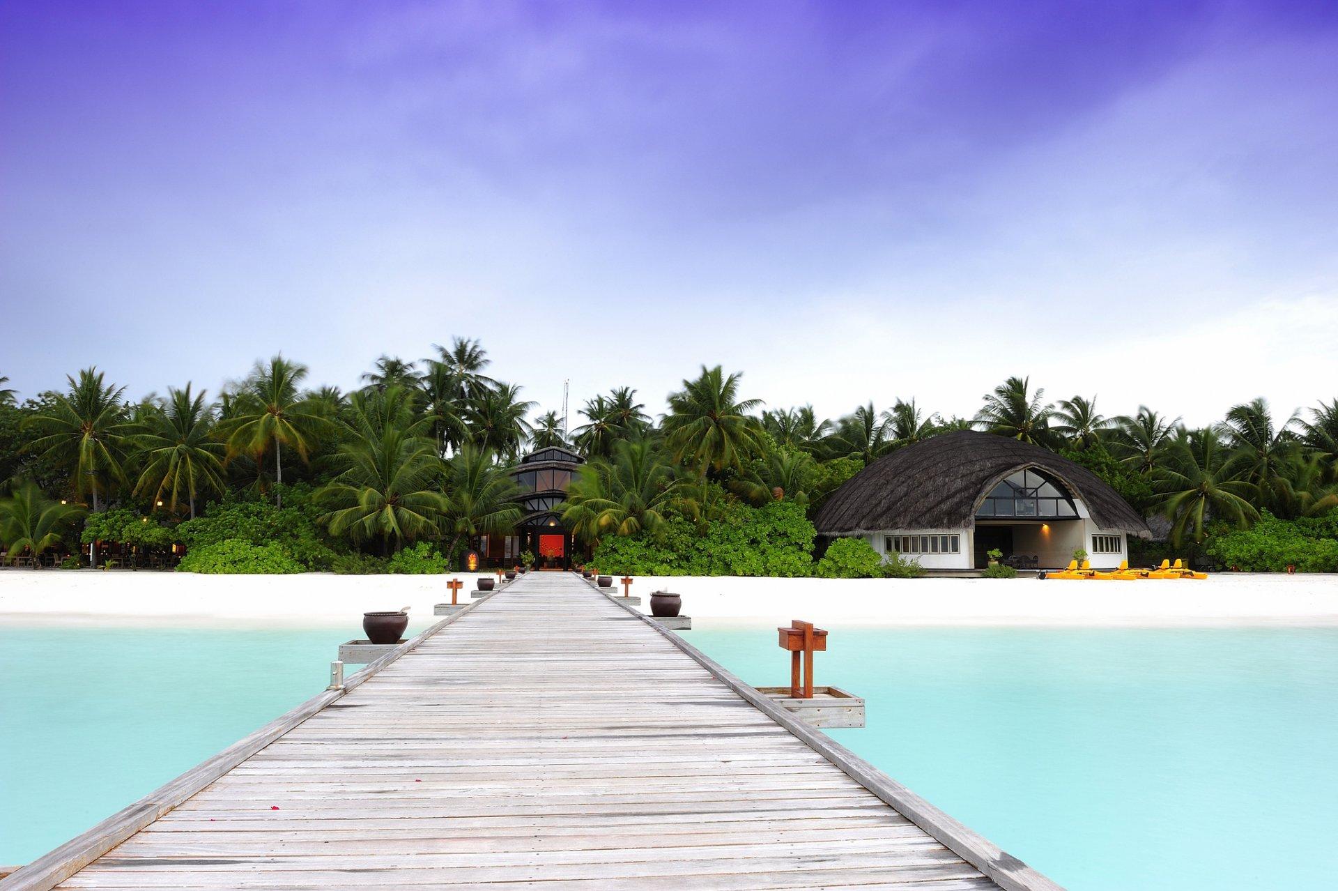Отель апартаменты пальмы  № 3705599 бесплатно
