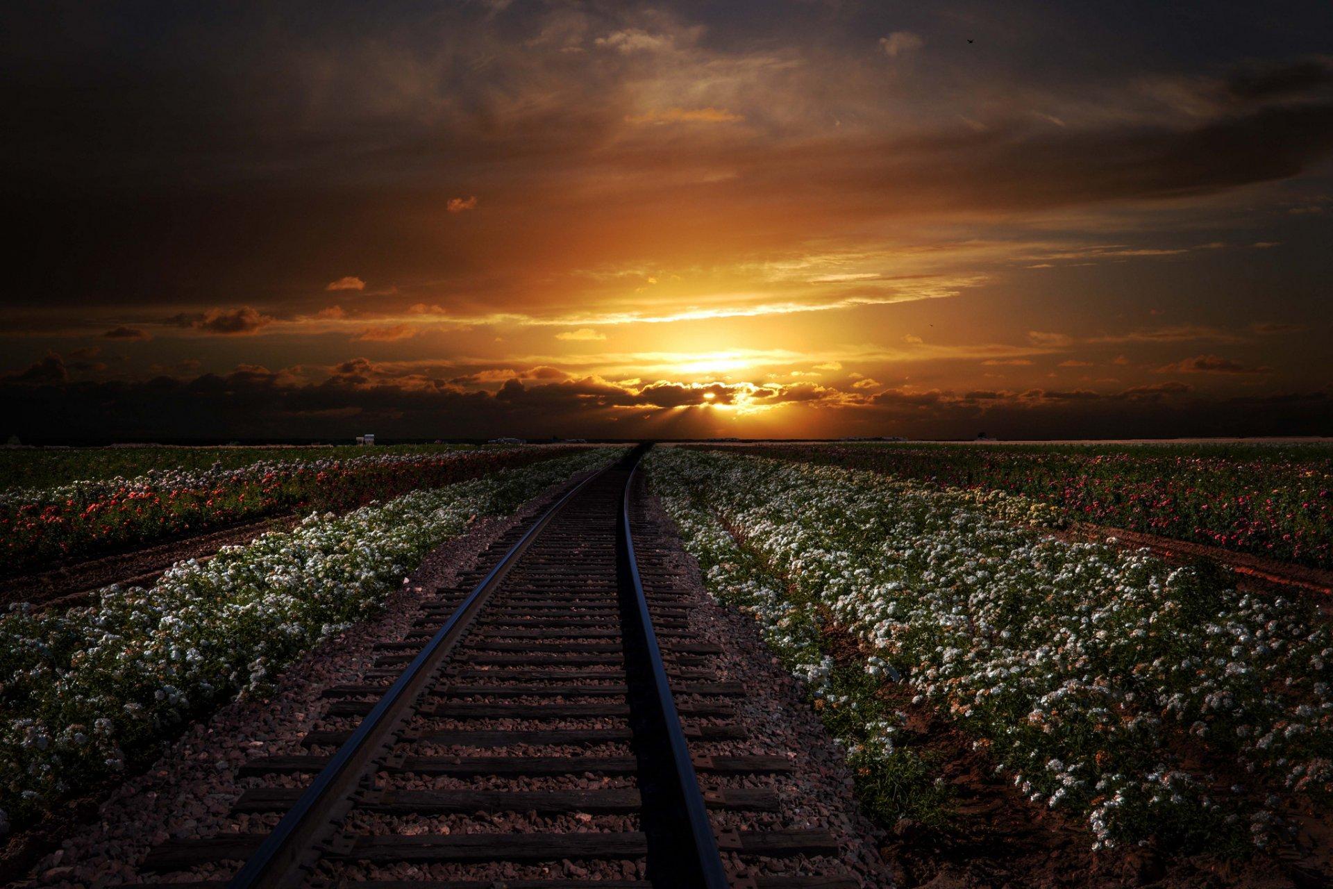 дорогах на железных фото закаты