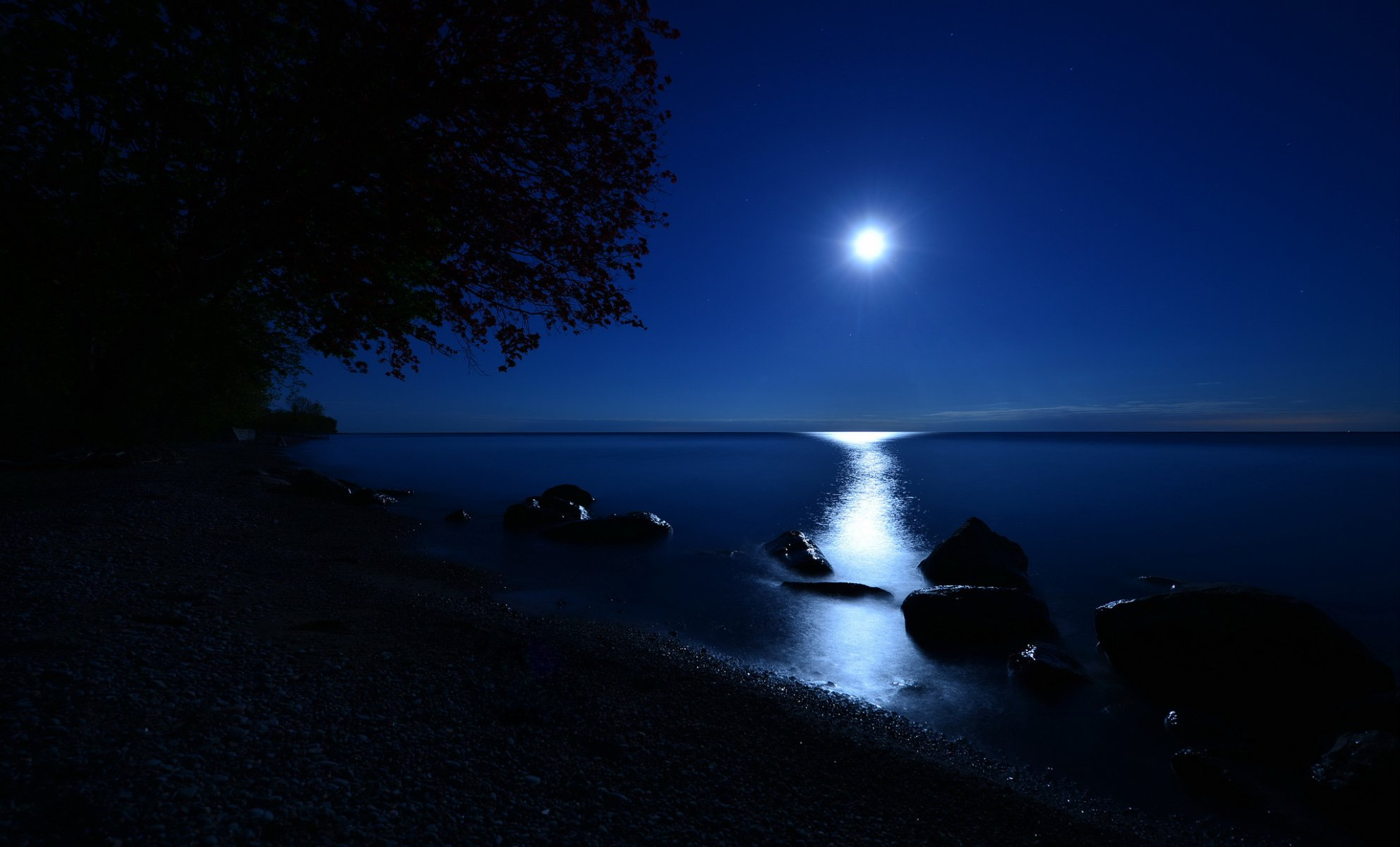 под картинка ночной берег озера пускай наш