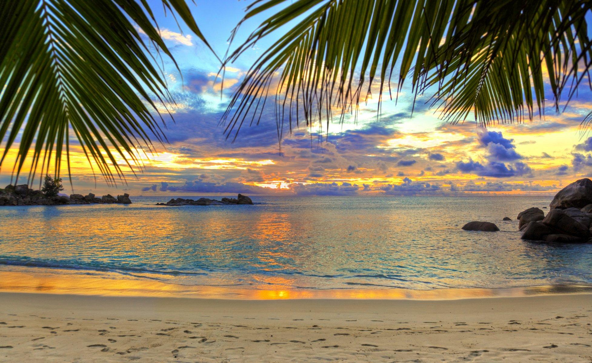 Пляж с пальмами ошибаетесь