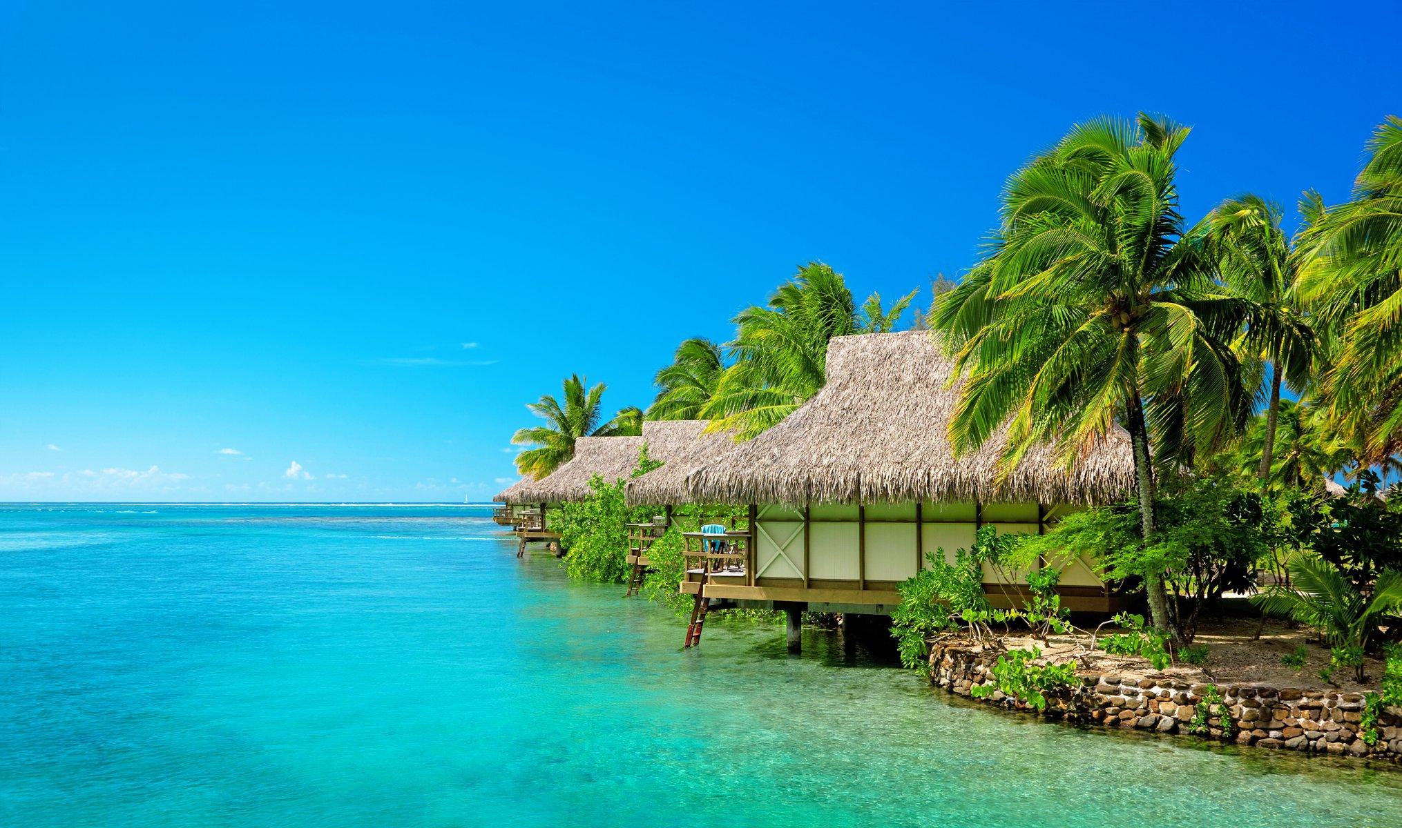 фото островов на экран телефона тату